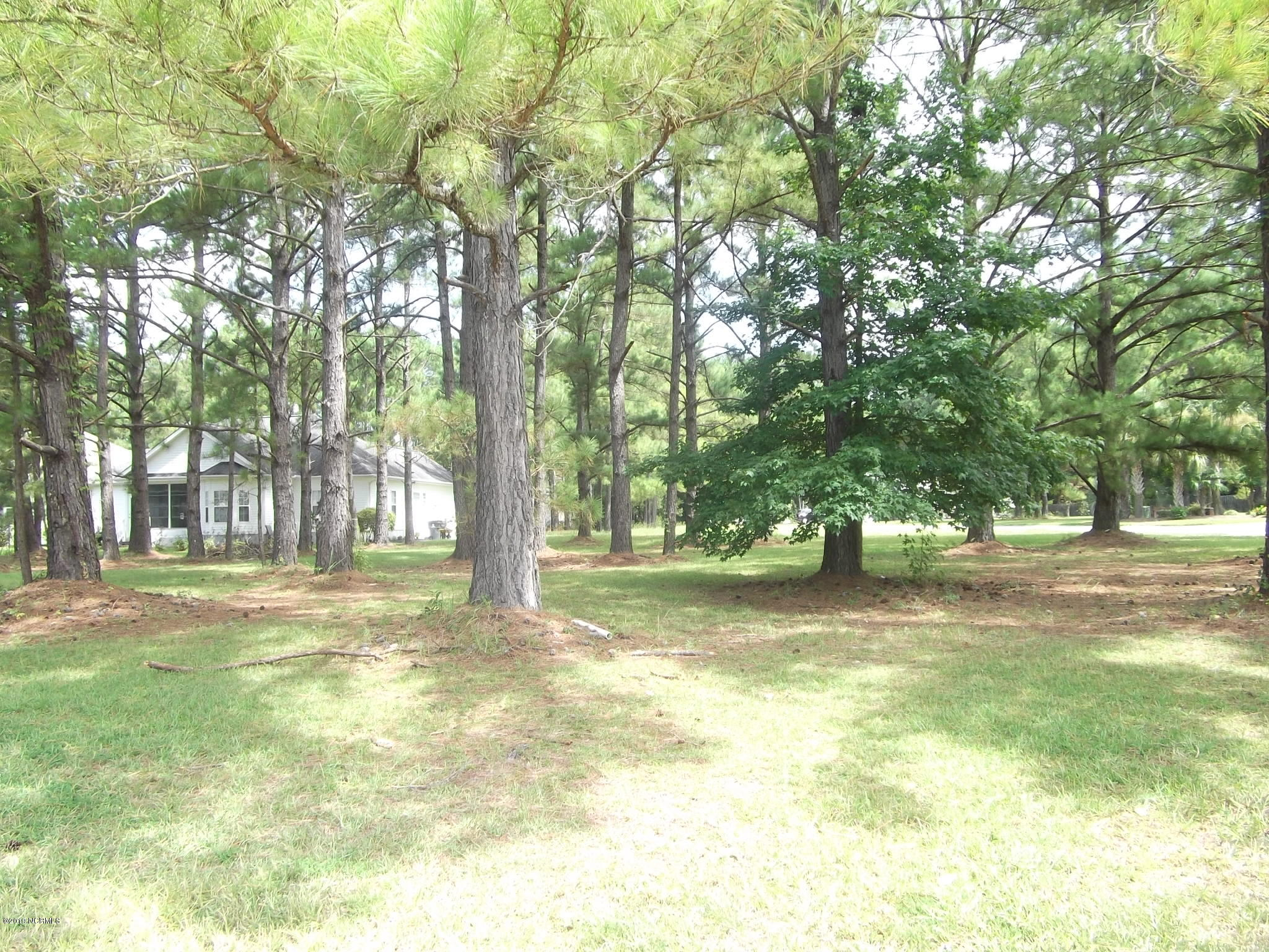 8814 Bainbridge Drive, Calabash, North Carolina 28467, ,Residential land,For sale,Bainbridge,100177784
