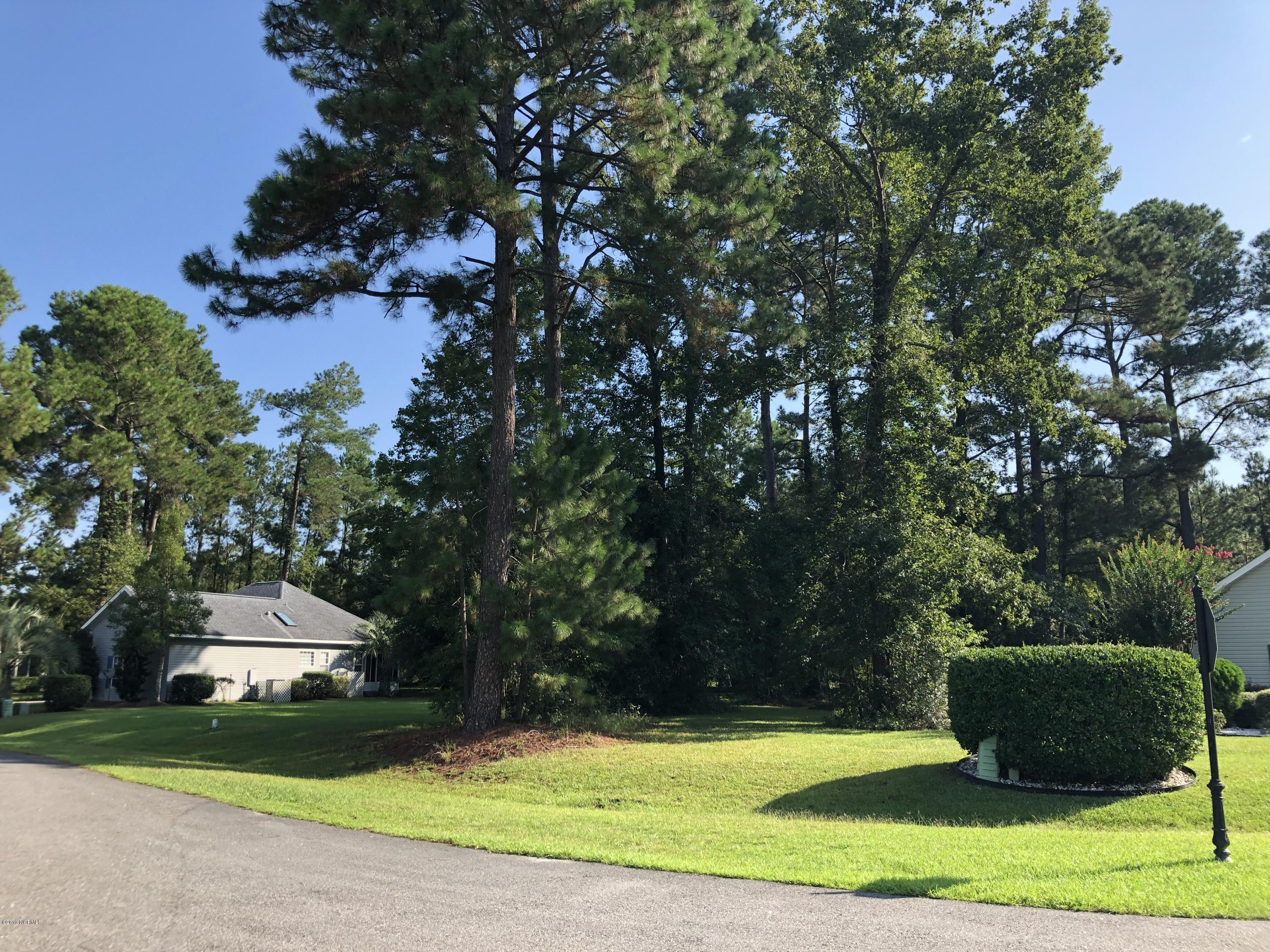 Brunswick Plantation & Golf Resort - MLS Number: 100180814