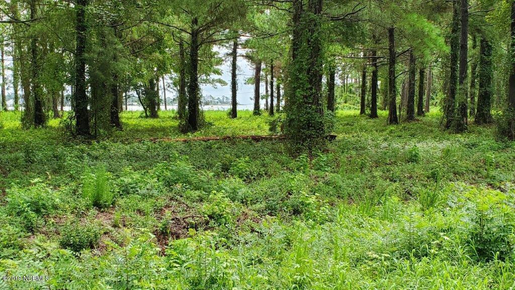 104 Branson Lane, Gloucester, North Carolina 28528, ,Residential land,For sale,Branson,100181009