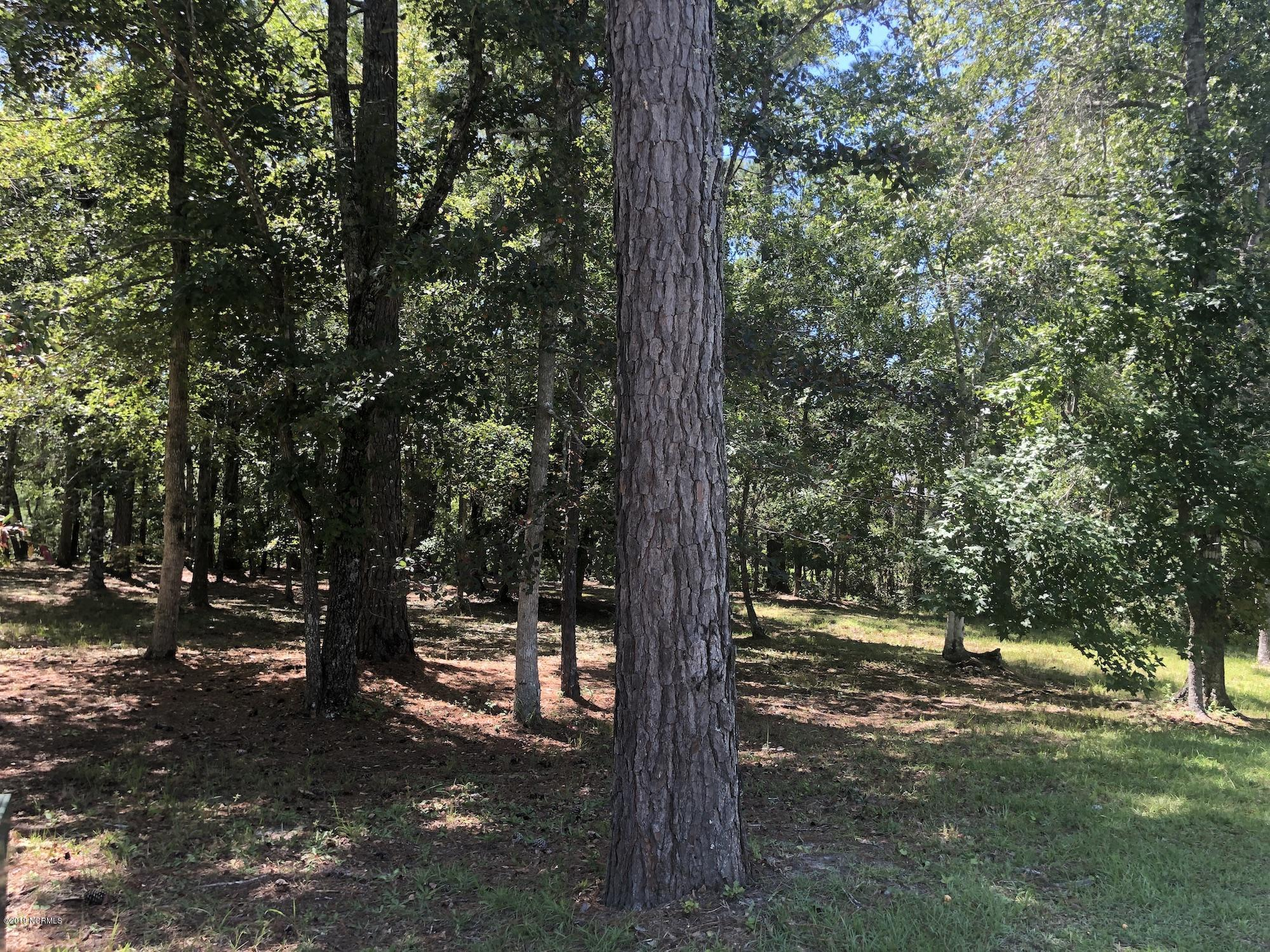 437 Cypress Ridge Drive, Bolivia, North Carolina 28422, ,Residential land,For sale,Cypress Ridge,100182001