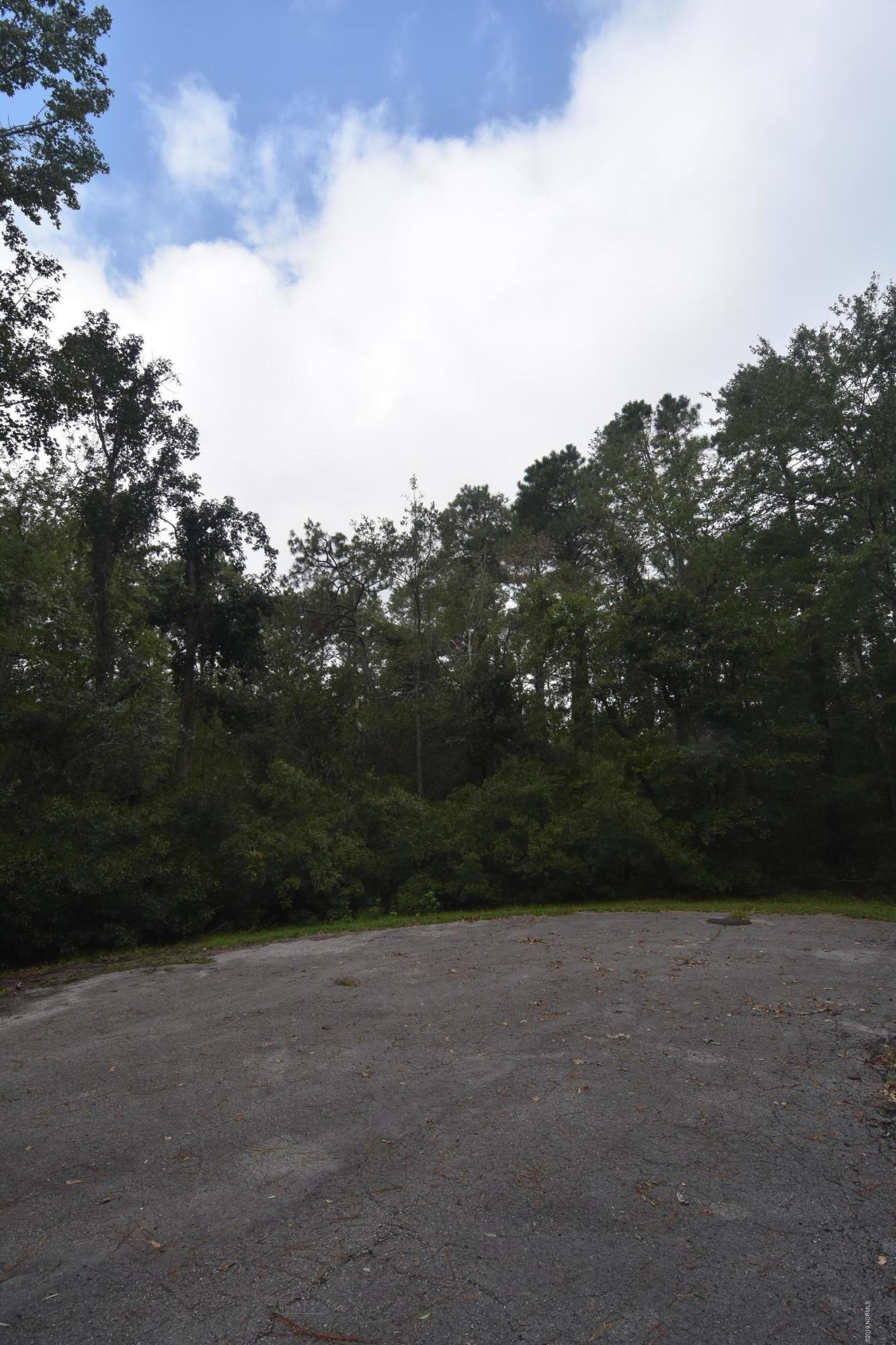 700 Davy Jones Court, New Bern, North Carolina 28560, ,Residential land,For sale,Davy Jones,100183201