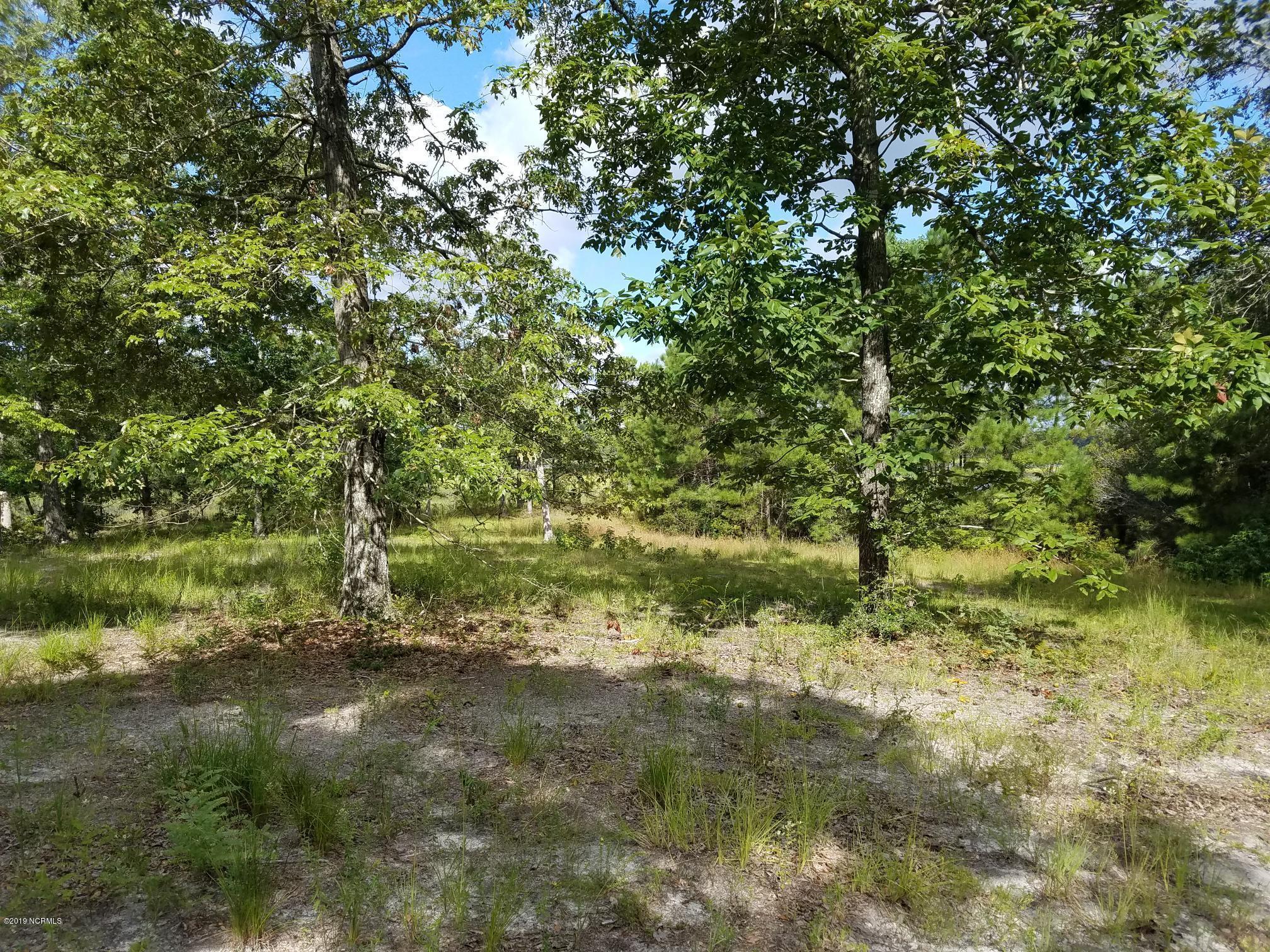 1255 Hidden Shores Drive, Shallotte, North Carolina 28470, ,Residential land,For sale,Hidden Shores,100183858
