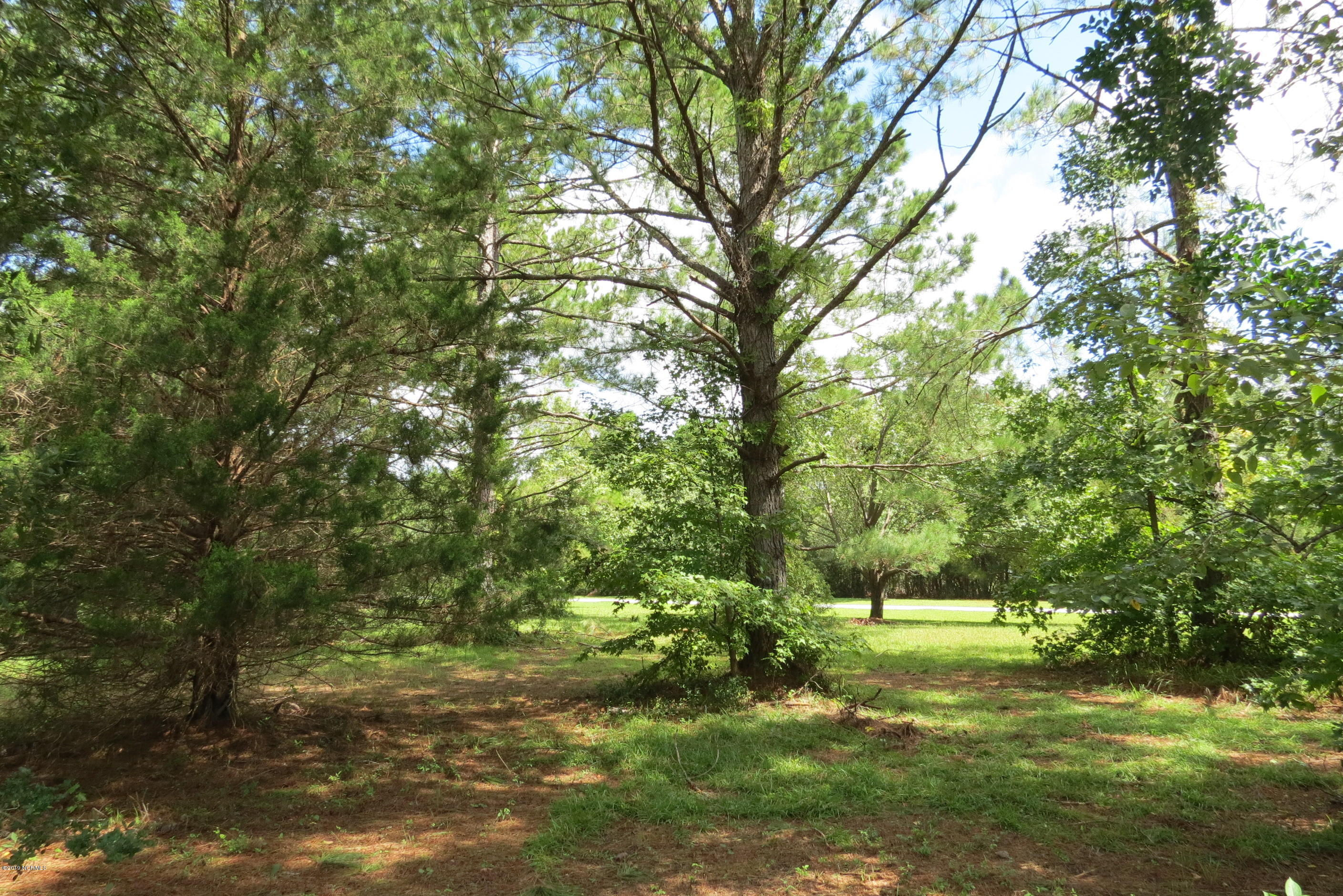 246 Silver Acres Road, Merritt, North Carolina 28556, ,Residential land,For sale,Silver Acres,100184255