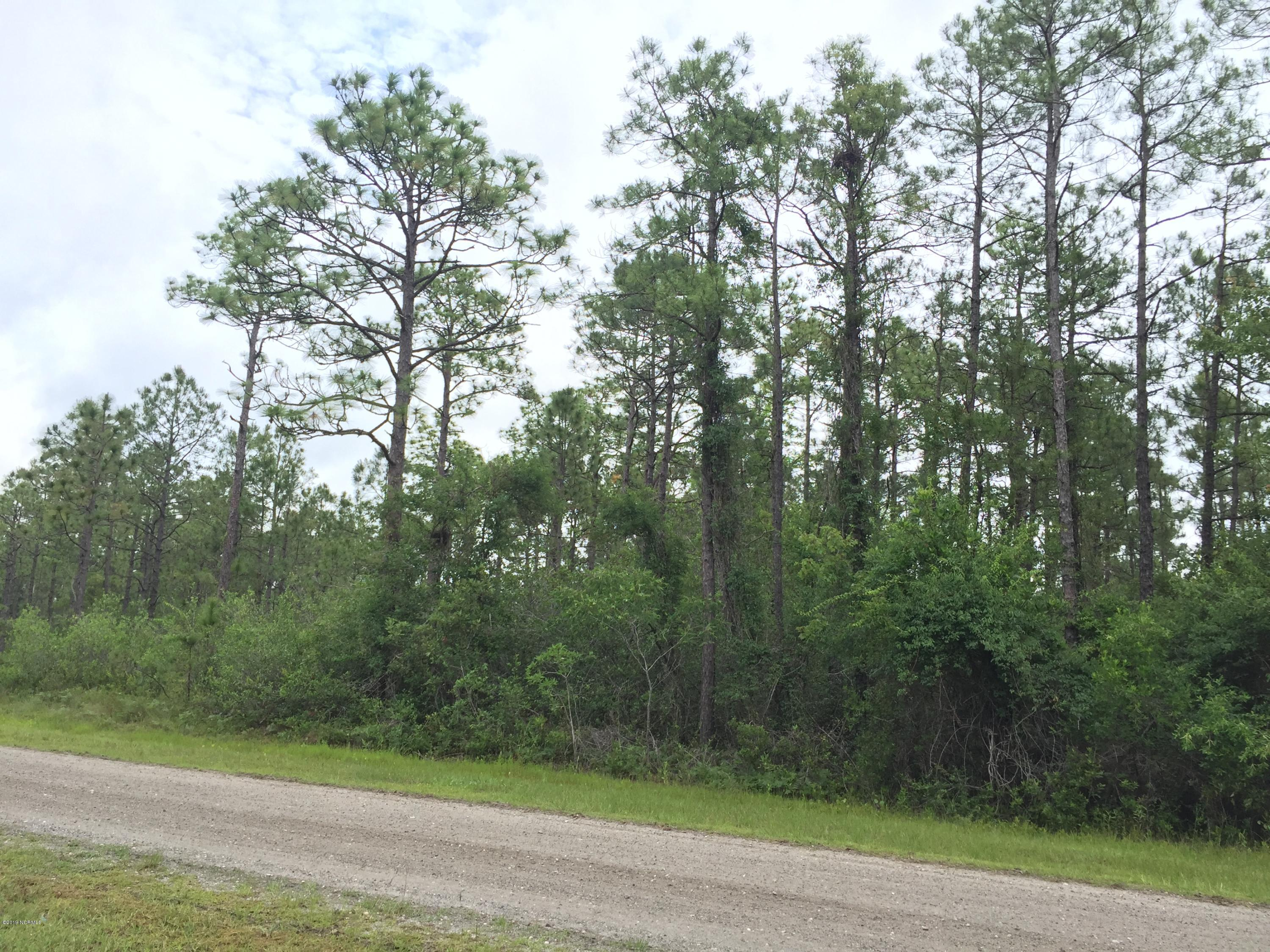 L202 & 203 Darnell Road, Southport, North Carolina 28461, ,Residential land,For sale,Darnell,100184305