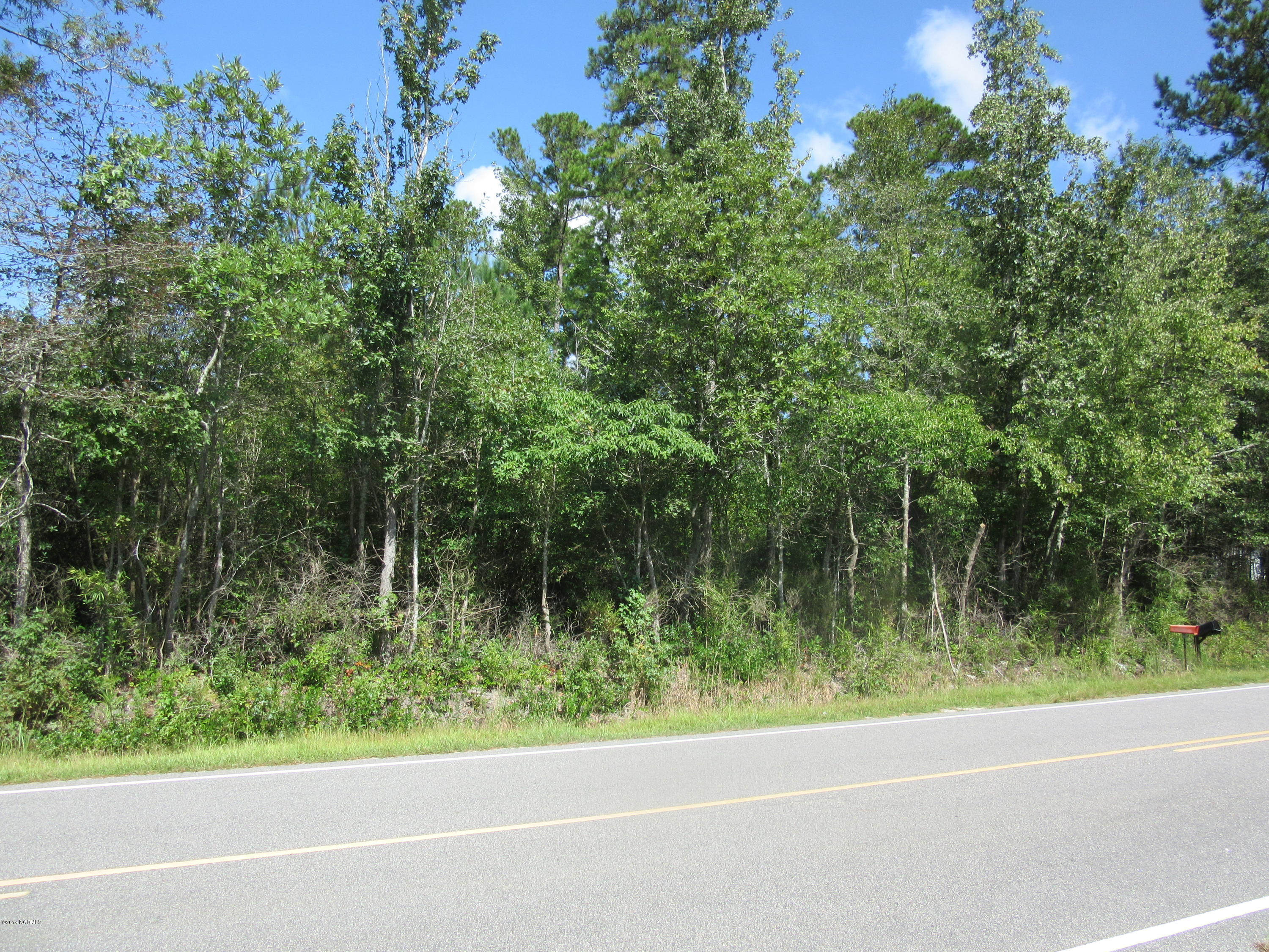 0 Briarcliff Road, Lumberton, North Carolina 28358, ,Undeveloped,For sale,Briarcliff,100184407