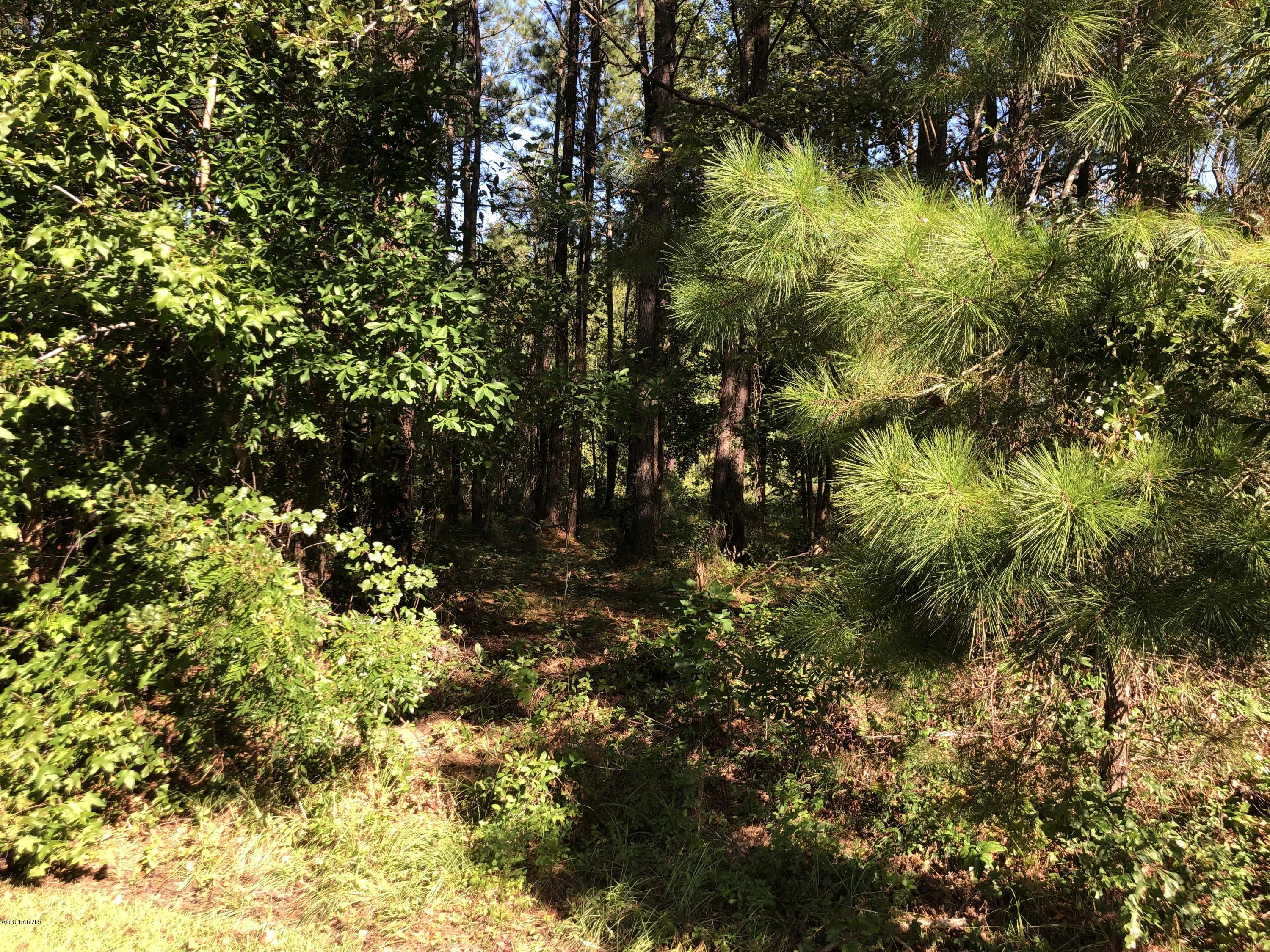 16 Pointe Road, Rocky Point, North Carolina 28457, ,Residential land,For sale,Pointe,100185365