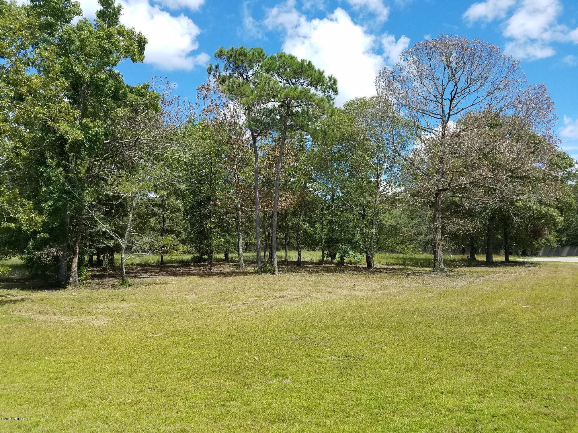 1262 Hidden Shores Drive, Shallotte, North Carolina 28470, ,Residential land,For sale,Hidden Shores,100185448