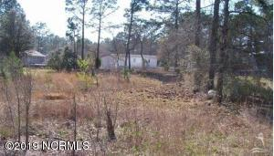 1320 Fifty Lakes Drive, Boiling Spring Lakes, North Carolina 28461, ,Residential land,For sale,Fifty Lakes,100185543