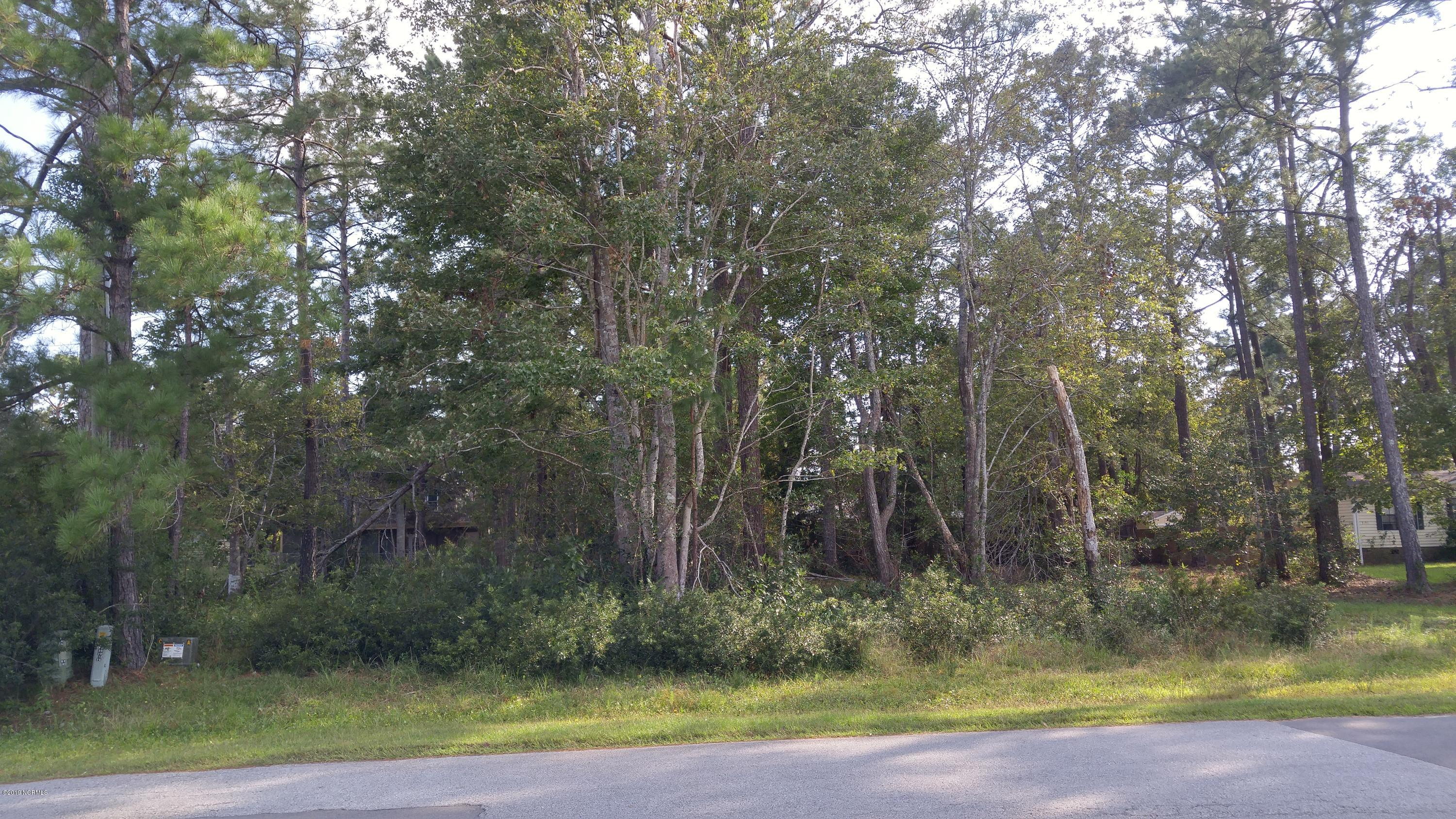 3179 Pine Hill Drive, Shallotte, North Carolina 28470, ,Residential land,For sale,Pine Hill,100186033