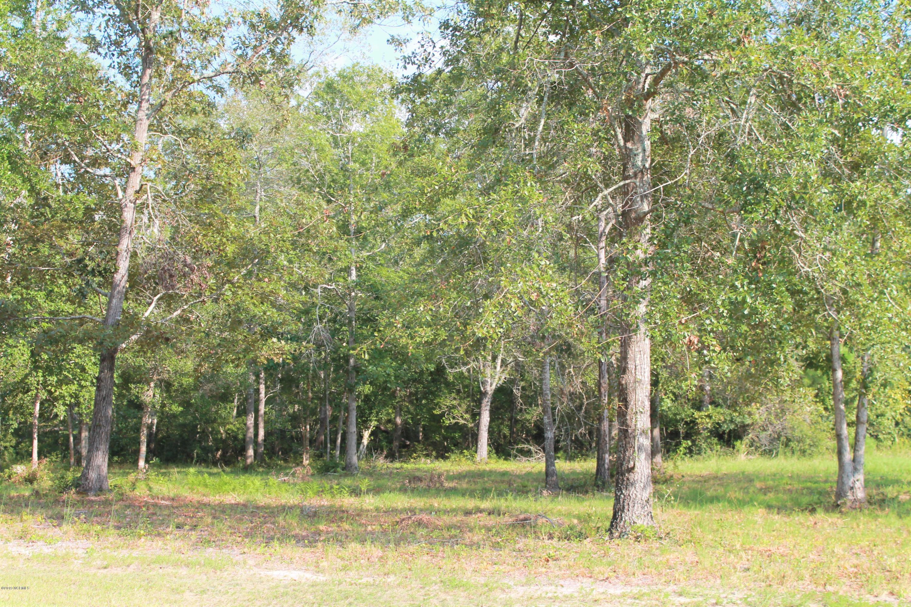 584 Sanctuary Point, Supply, North Carolina 28462, ,Residential land,For sale,Sanctuary,100108210