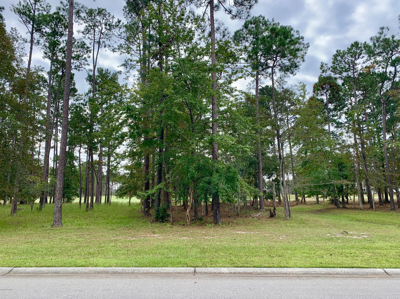 367 Laurel Valley Drive, Shallotte, North Carolina 28470, ,Residential land,For sale,Laurel Valley,100186732