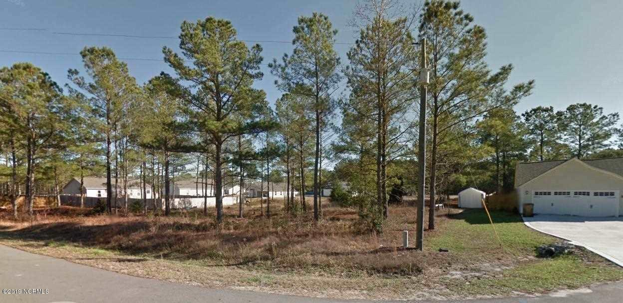 403 Peyton Place, Maple Hill, North Carolina 28454, ,Residential land,For sale,Peyton,100186919