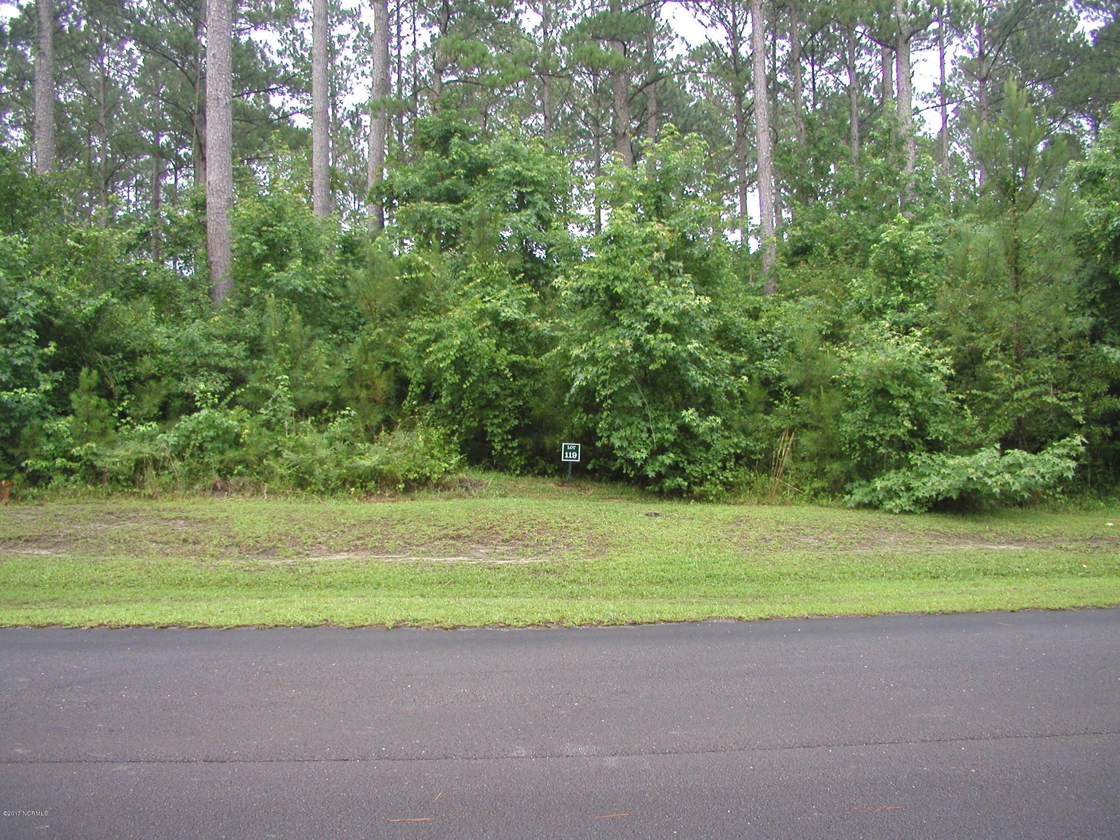 105 Savannah Court, Havelock, North Carolina 28532, ,Wooded,For sale,Savannah,100187779