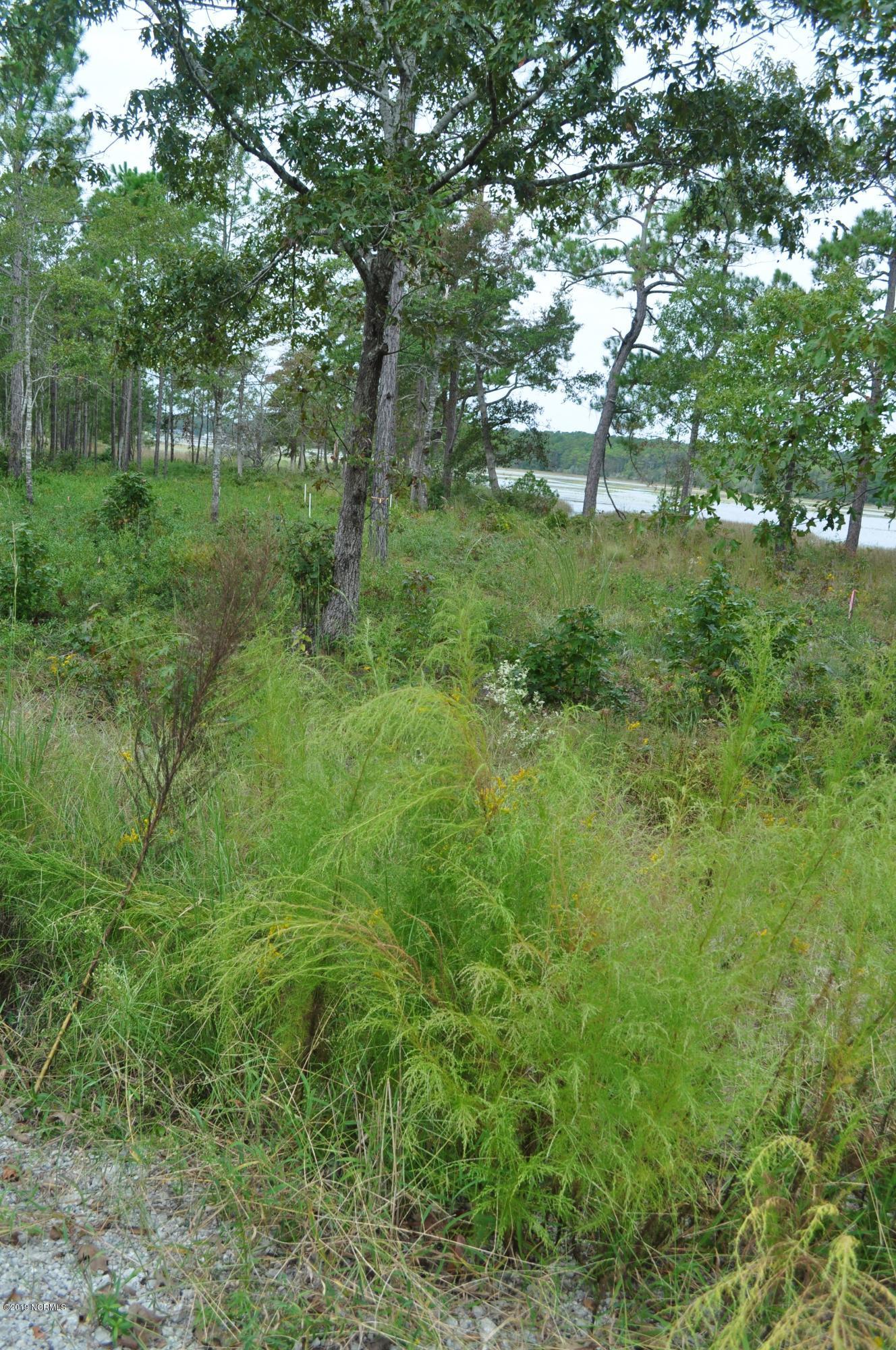 2021 Marsh Acres Court, Supply, North Carolina 28462, ,Residential land,For sale,Marsh Acres,100187378