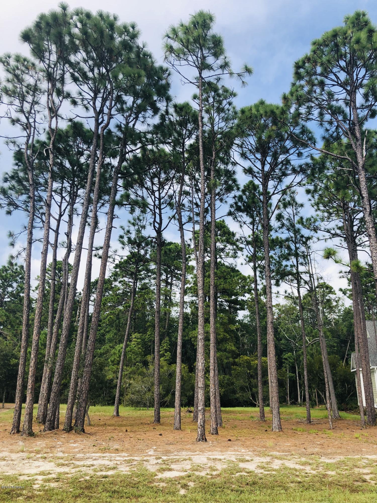 3870 Big Magnolia Way, Southport, North Carolina 28461, ,Residential land,For sale,Big Magnolia,100187603