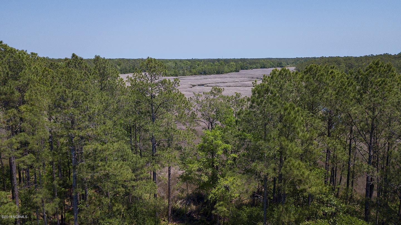 702 Lakeland Drive, Bolivia, North Carolina 28422, ,Residential land,For sale,Lakeland,100188276