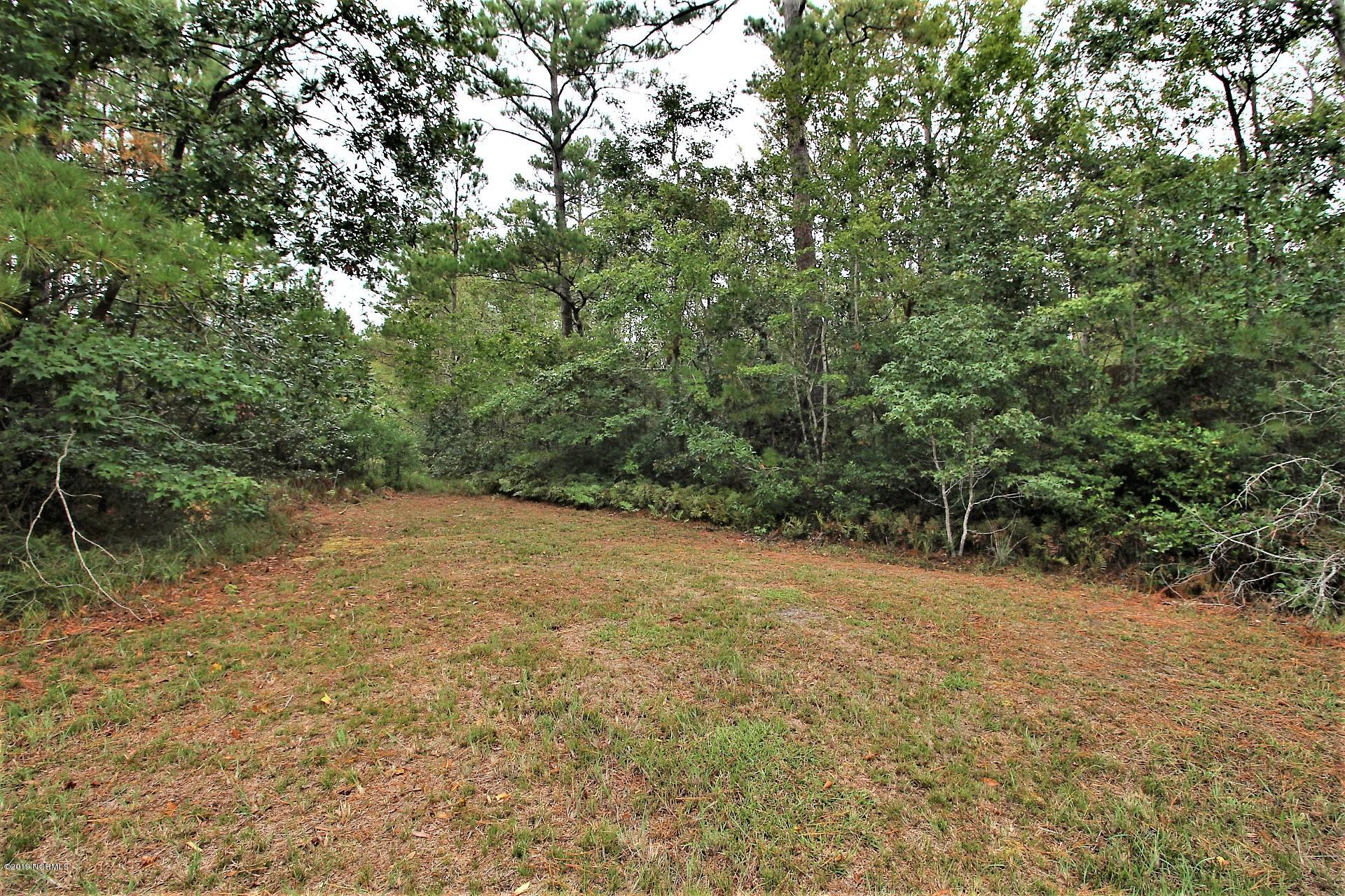 350 Wayland Court, Gloucester, North Carolina 28528, ,Residential land,For sale,Wayland,100188597