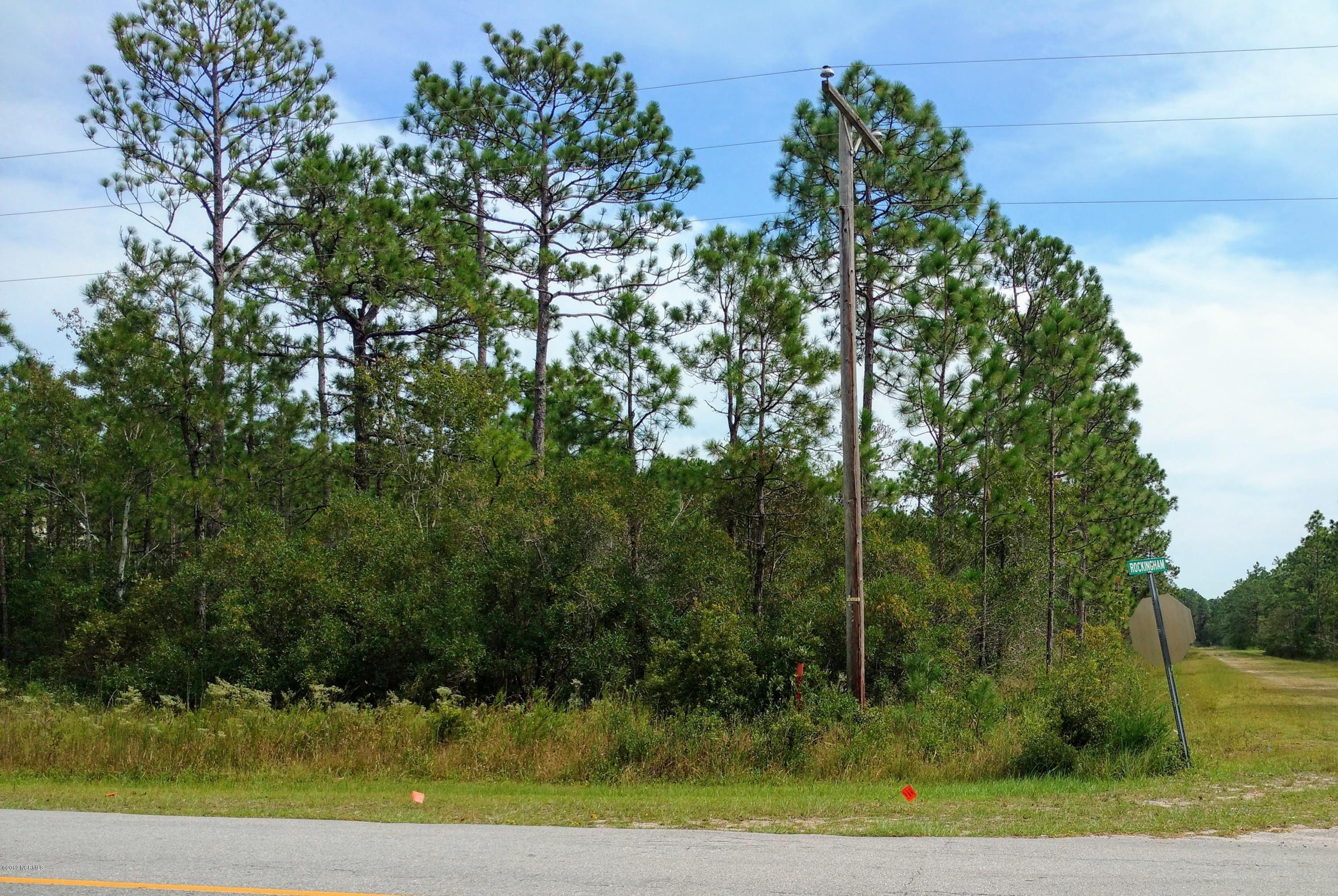 230 Fifty Lakes Drive, Southport, North Carolina 28461, ,Residential land,For sale,Fifty Lakes,100188899