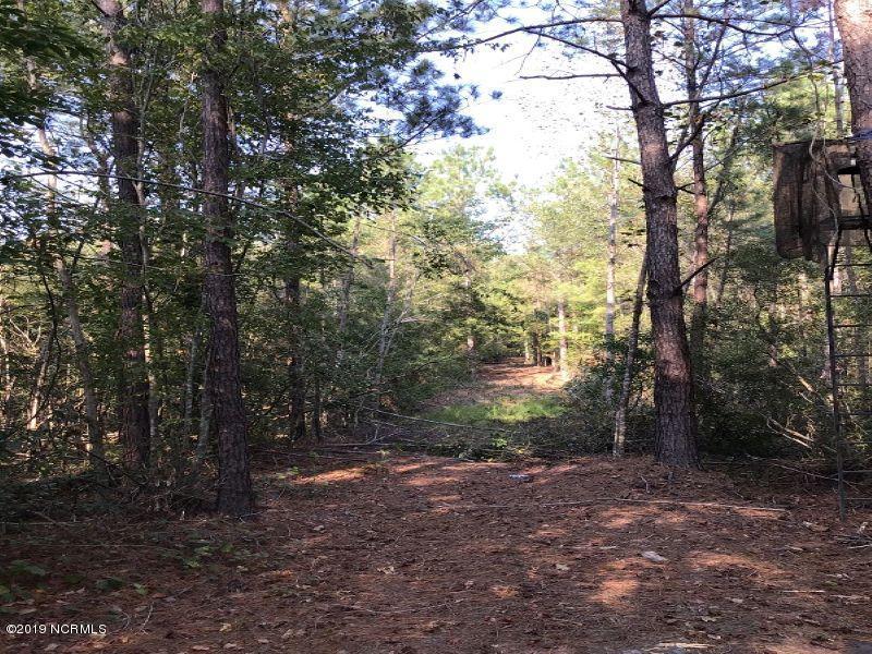 0 Swimming Hole Road, Delco, North Carolina 28436, ,Recreation,For sale,Swimming Hole,100188912