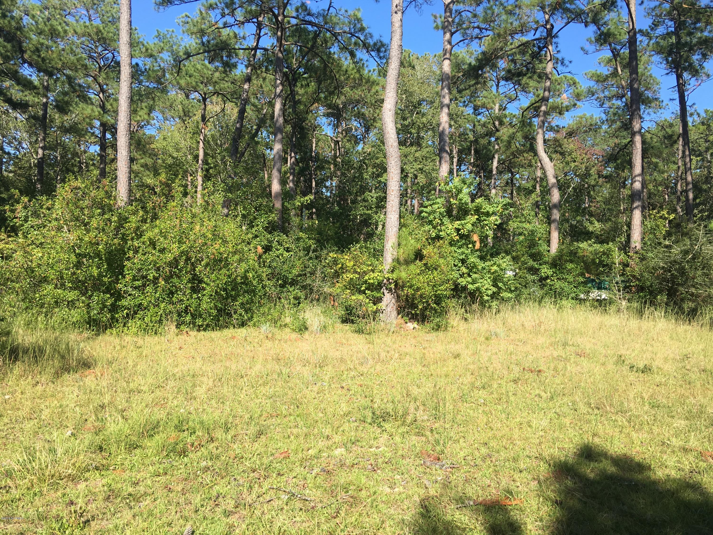 307 Crows Nest Road, Beaufort, North Carolina 28516, ,Residential land,For sale,Crows Nest,100188042