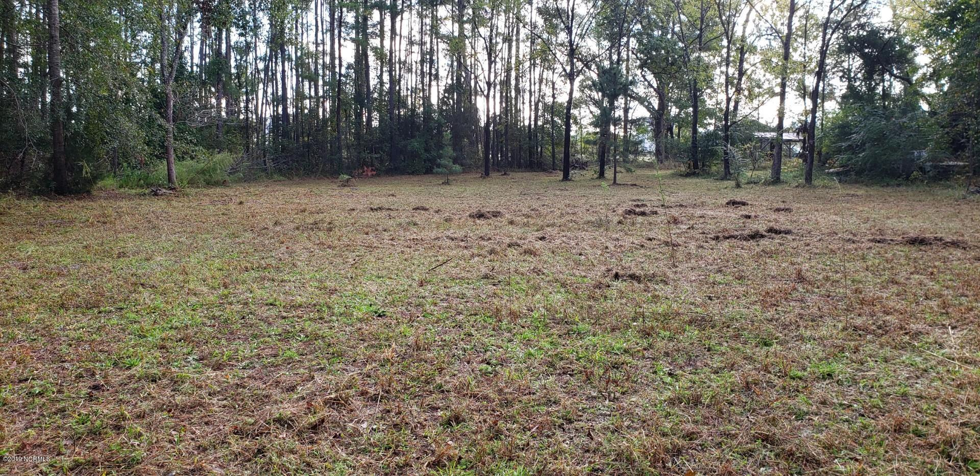 Hwy 210, Rocky Point, North Carolina 28457, ,Residential land,For sale,Hwy 210,100189352
