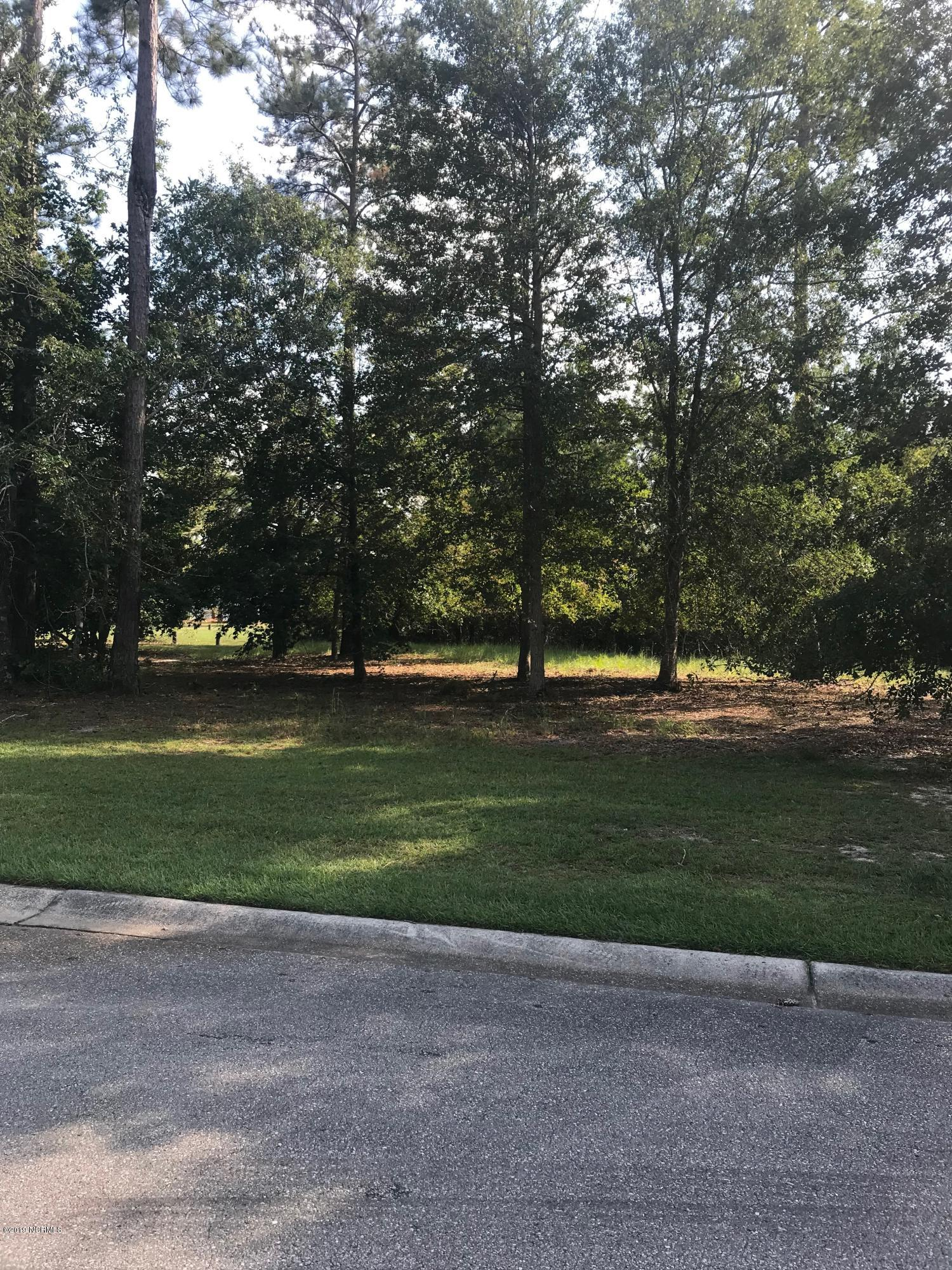 346 River Wynd Drive, Shallotte, North Carolina 28470, ,Residential land,For sale,River Wynd,100189370