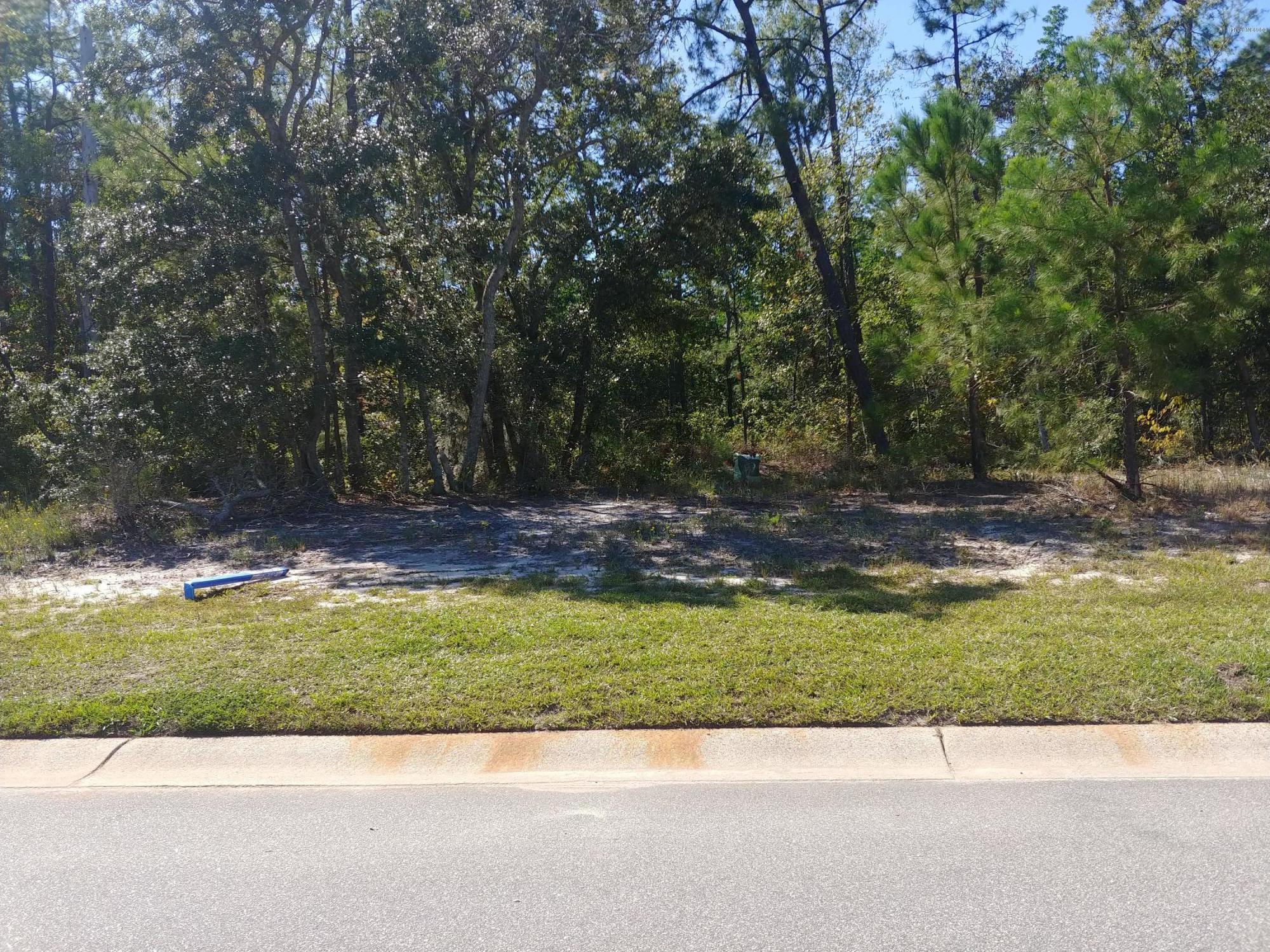 904 Seathwaite Lane, Leland, North Carolina 28451, ,Residential land,For sale,Seathwaite,100189610