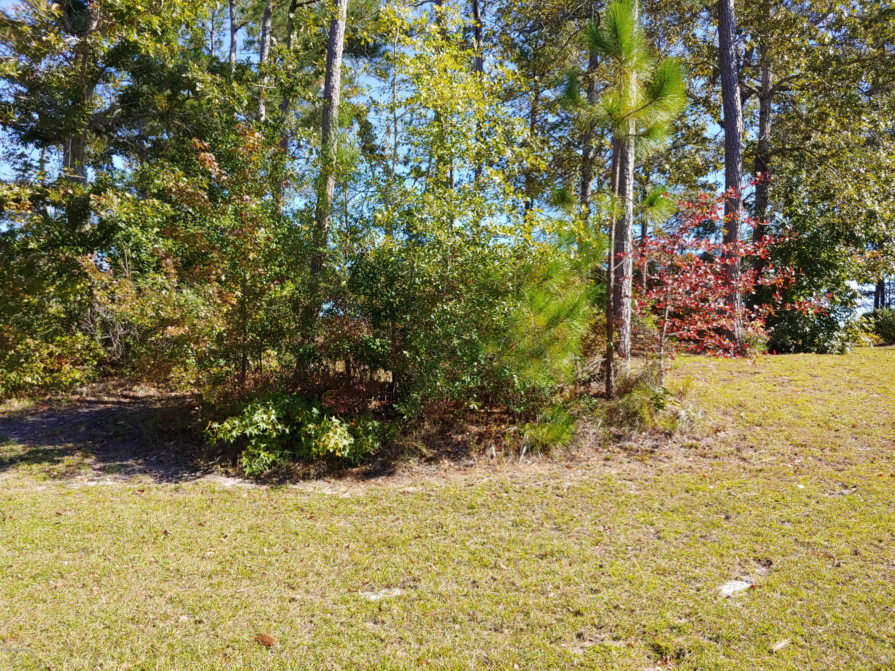 1218 St Simons Drive, Bolivia, North Carolina 28422, ,Residential land,For sale,St Simons,100189835