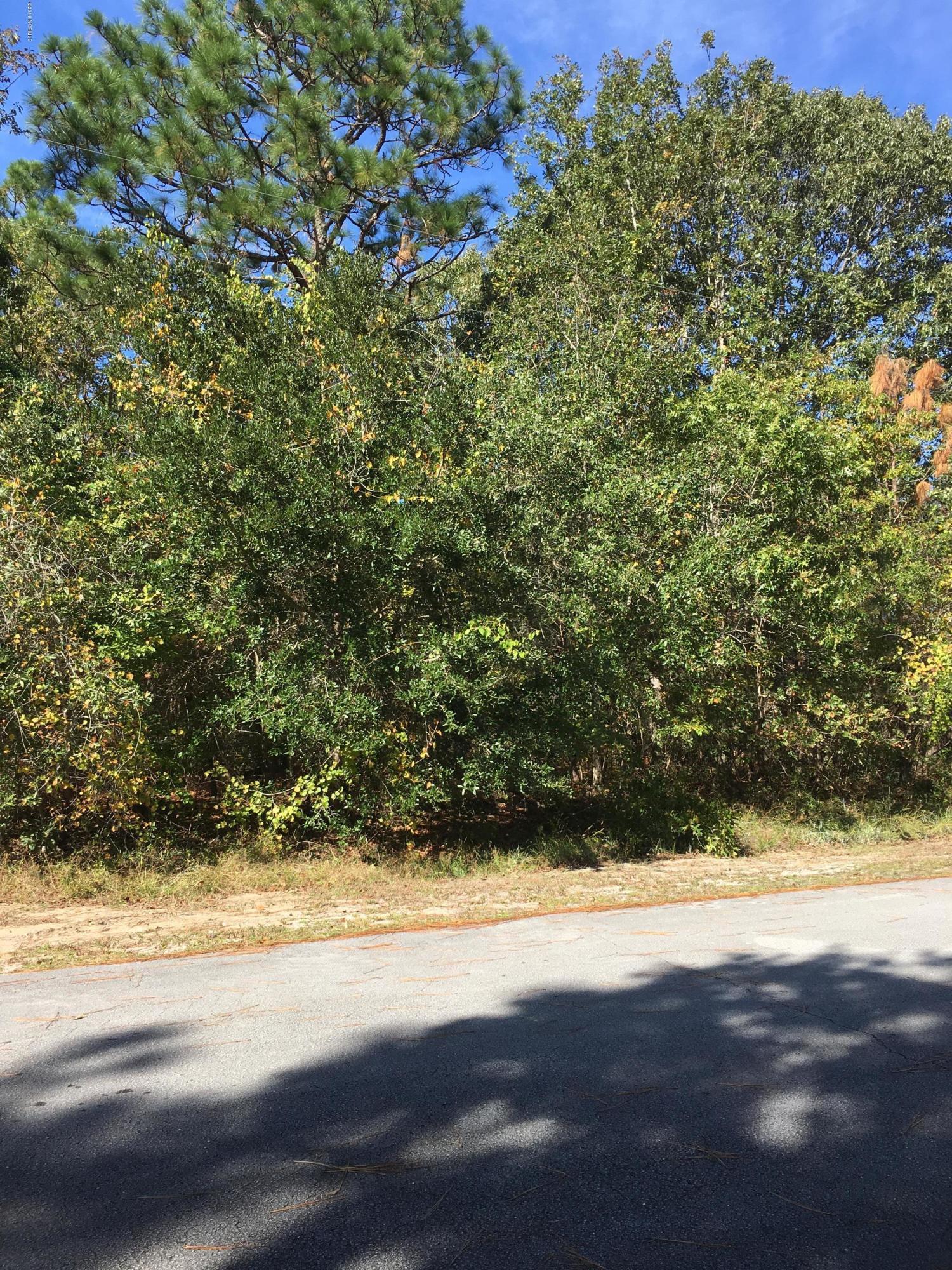 813 Bluebird Drive, New Bern, North Carolina 28560, ,Residential land,For sale,Bluebird,100189941