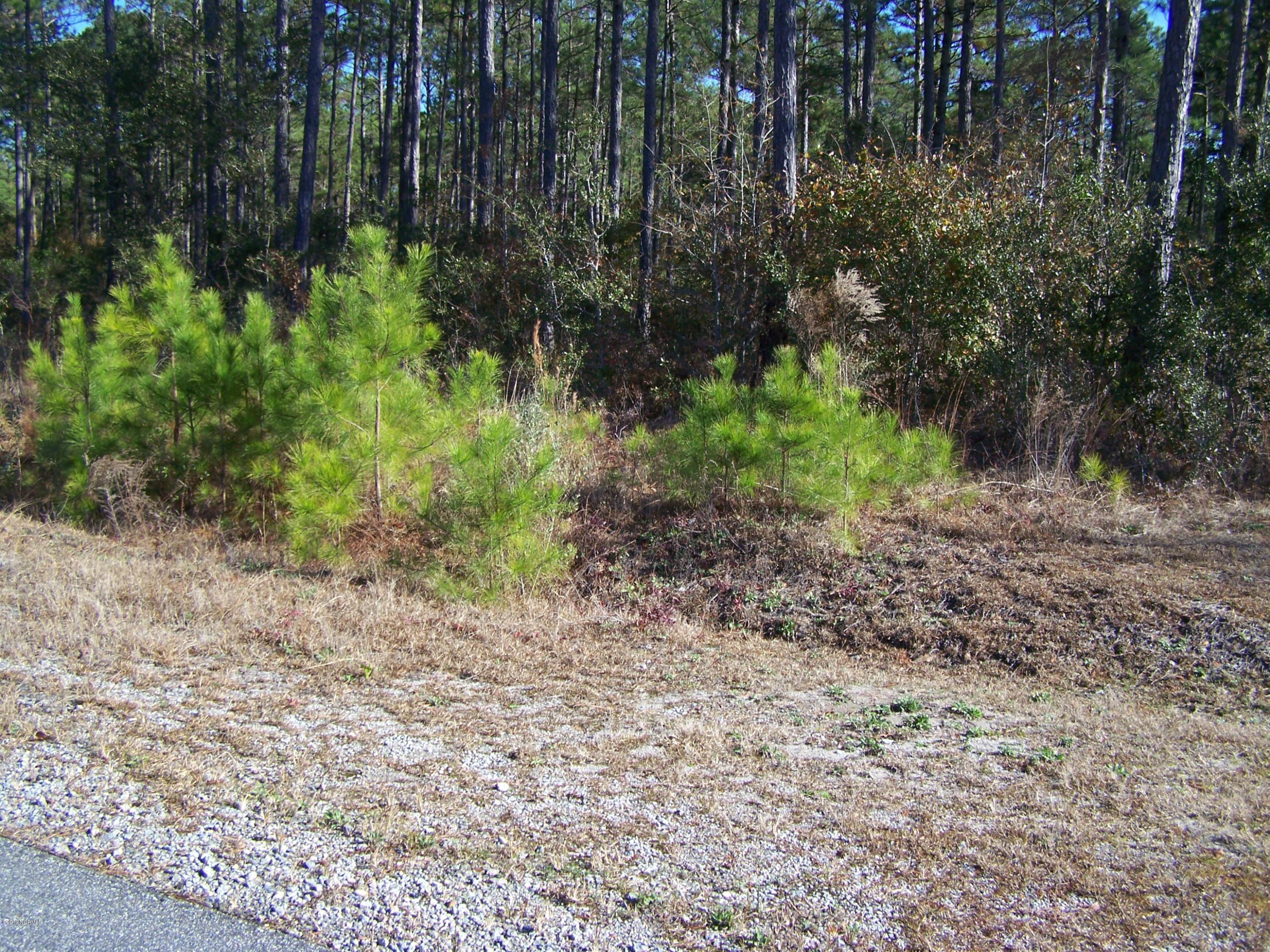 4220 Committee Drive, Southport, North Carolina 28461, ,Commercial/industrial,For sale,Committee,100190025