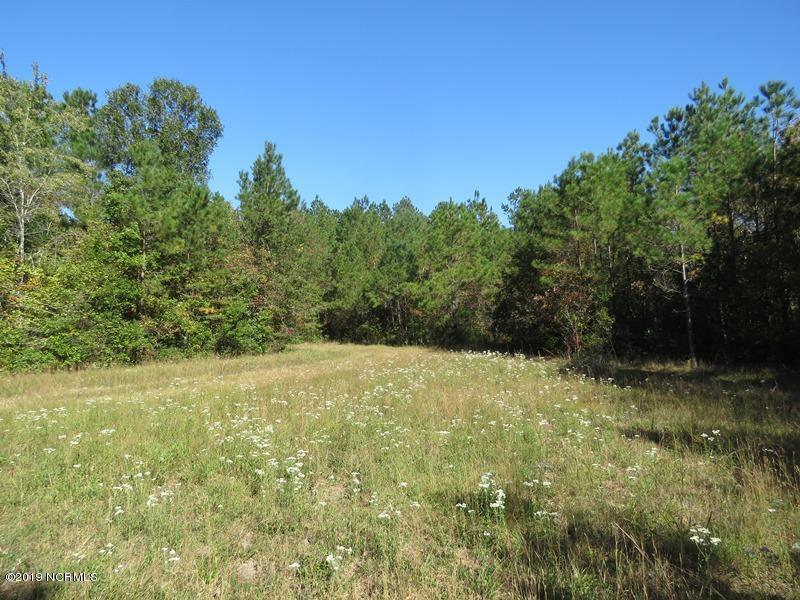0 Chauncey Town Road, Lake Waccamaw, North Carolina 28450, ,Timberland,For sale,Chauncey Town,100190308