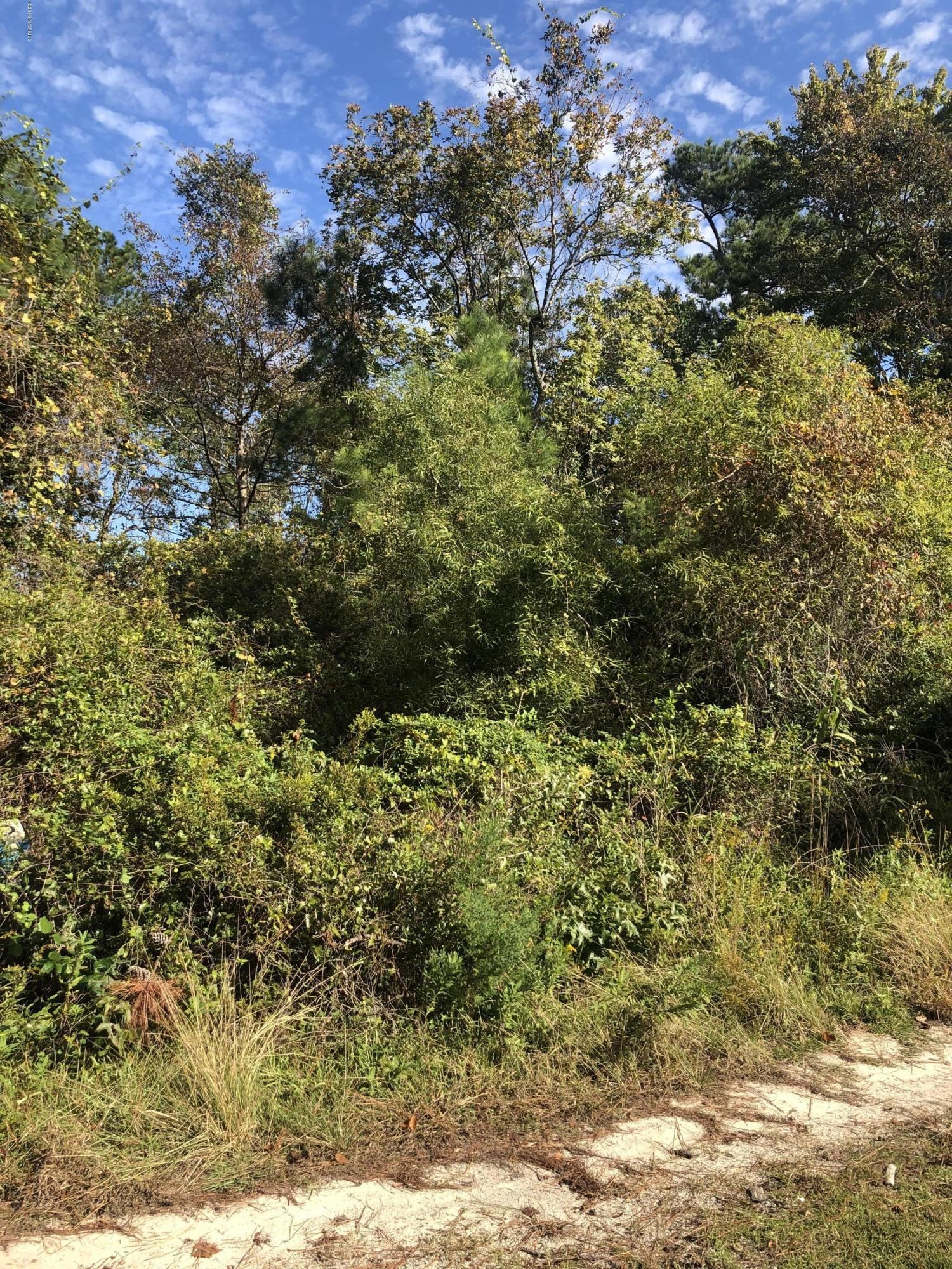 3070 Blue Drive, Supply, North Carolina 28462, ,Residential land,For sale,Blue,100190435