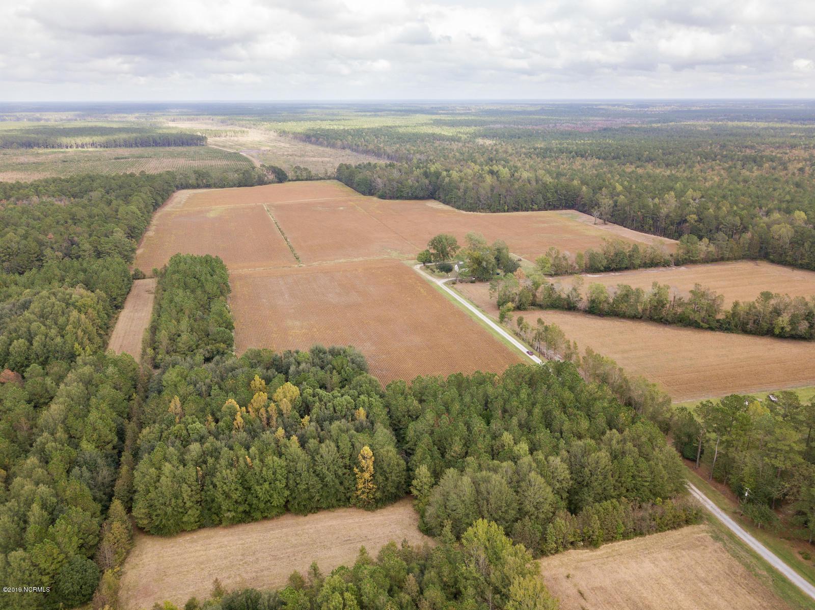 118ac Crooked Run Road, Willard, North Carolina 28478, ,Agriculture,For sale,Crooked Run,100190692