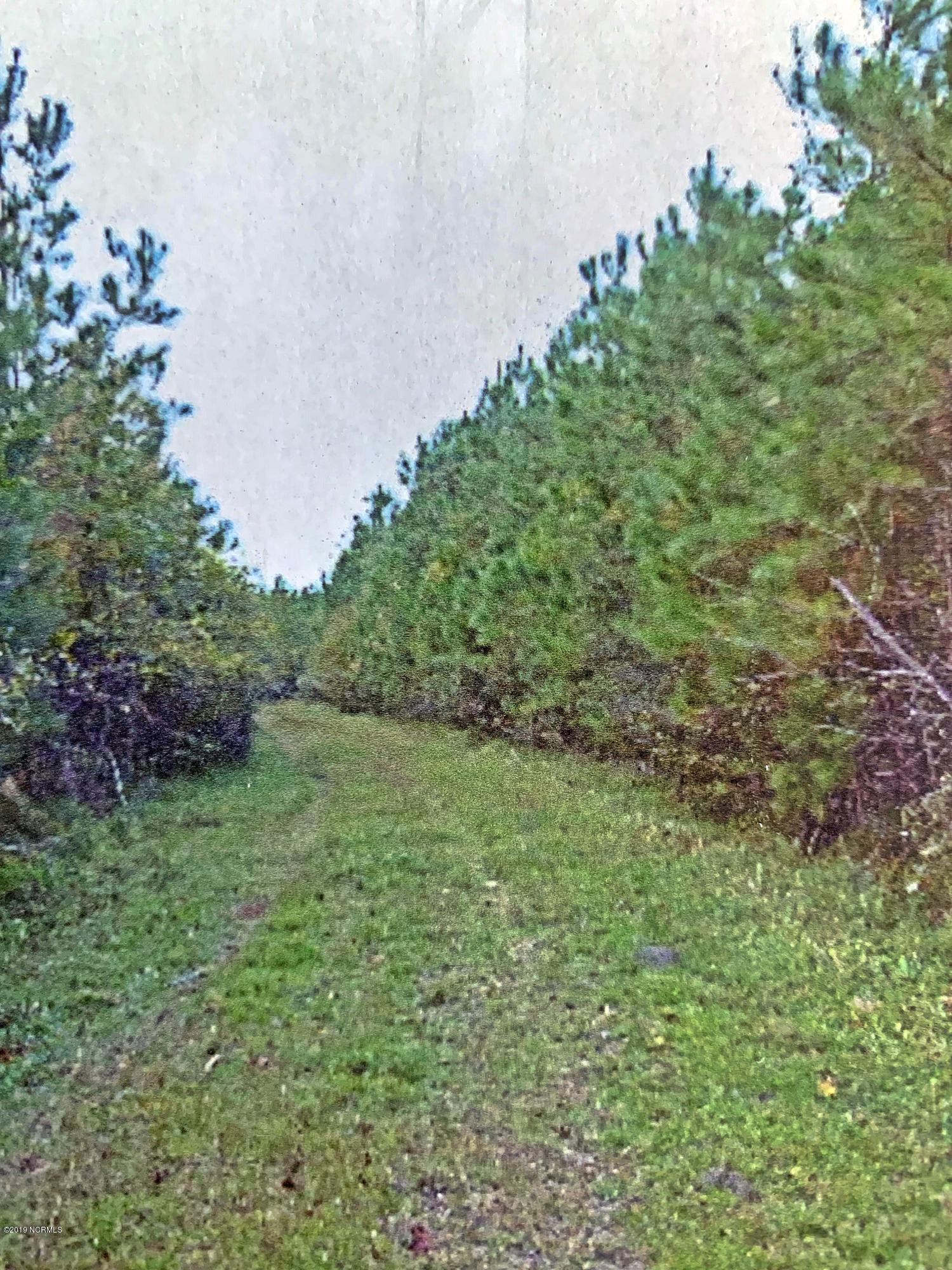 0 Off Mill Creek Road, Pollocksville, North Carolina 28573, ,Farm,For sale,Off Mill Creek,100192254