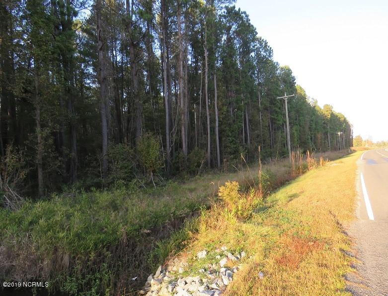 O Old Hwy 41, Bladenboro, North Carolina 28320, ,Recreation,For sale,Old Hwy 41,100191684