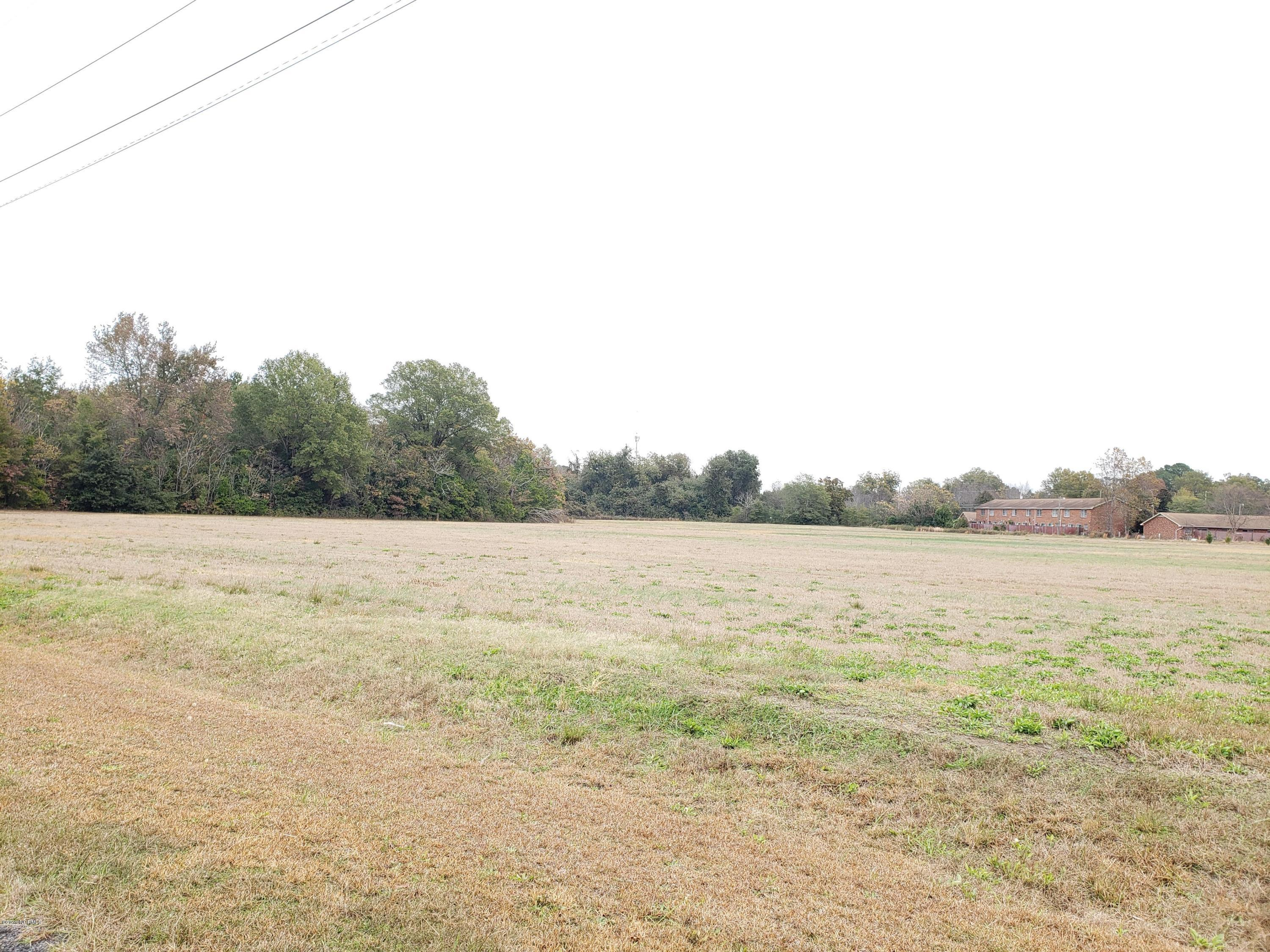 009-02a Wilkinson Drive, Laurinburg, North Carolina 28352, ,Undeveloped,For sale,Wilkinson,100193356