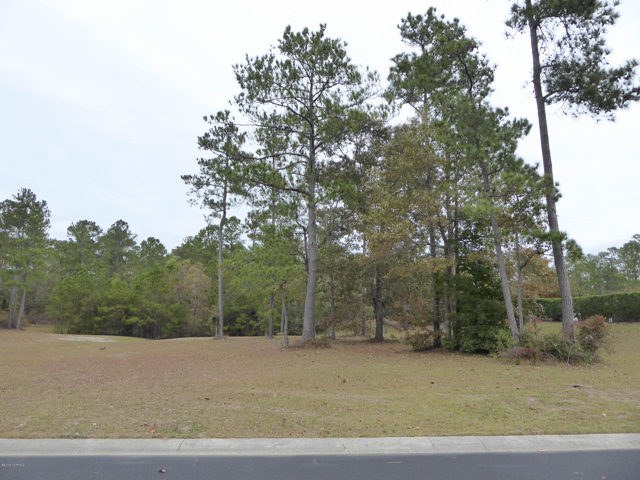 1426 Serrulata Drive, Bolivia, North Carolina 28422, ,Residential land,For sale,Serrulata,100193368