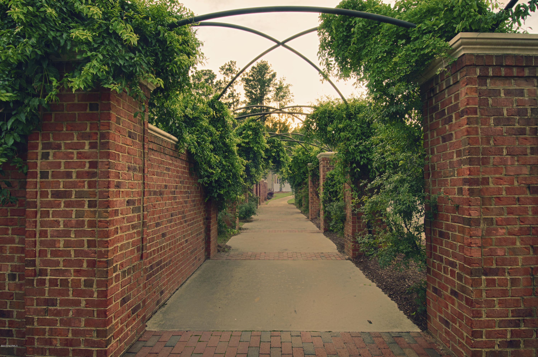 2503 Belmont Lake Drive, Rocky Mount, North Carolina 27804, ,Residential land,For sale,Belmont Lake,100196104