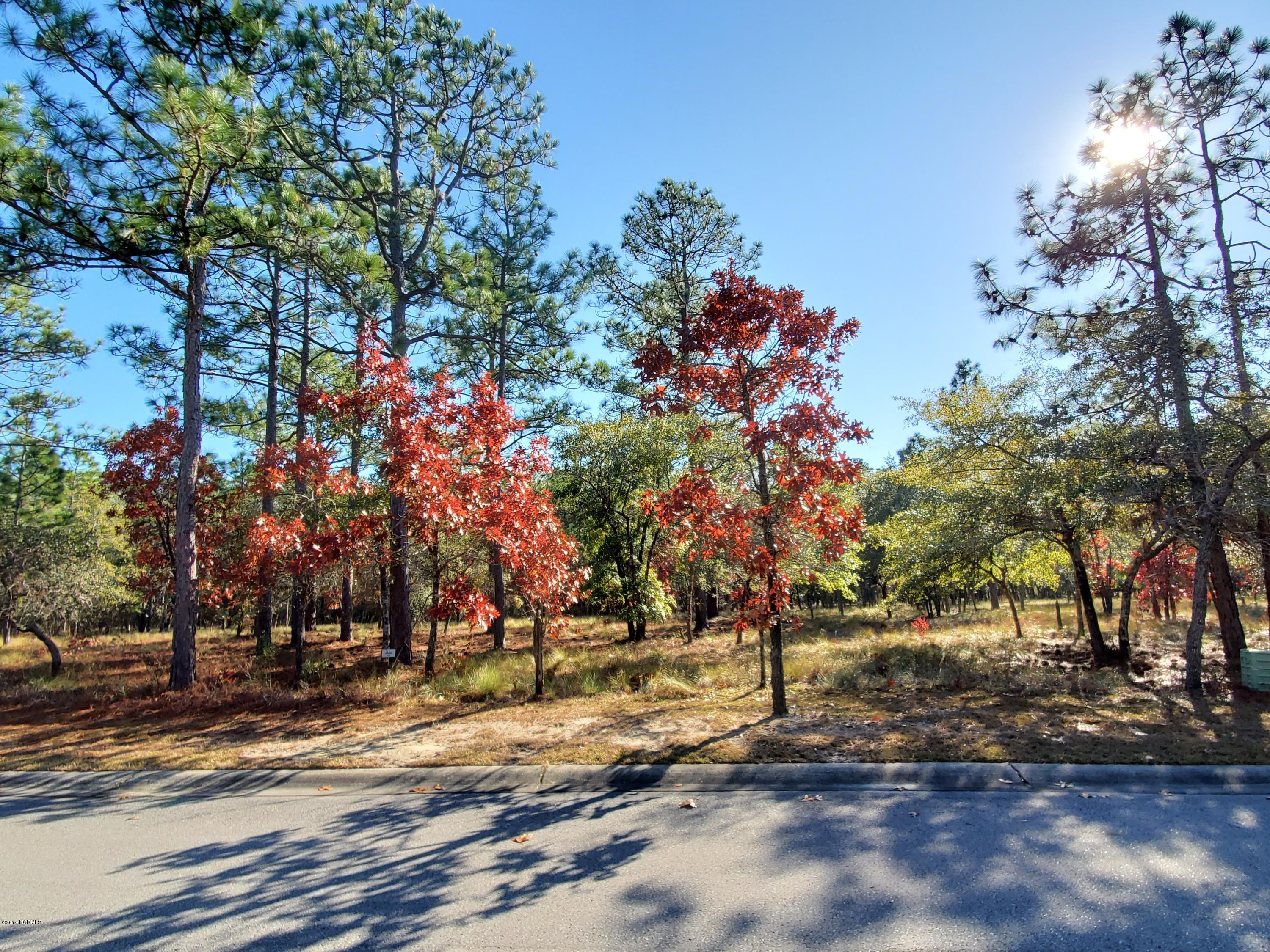 3593 Concordia Avenue, Supply, North Carolina 28462, ,Residential land,For sale,Concordia,100195712