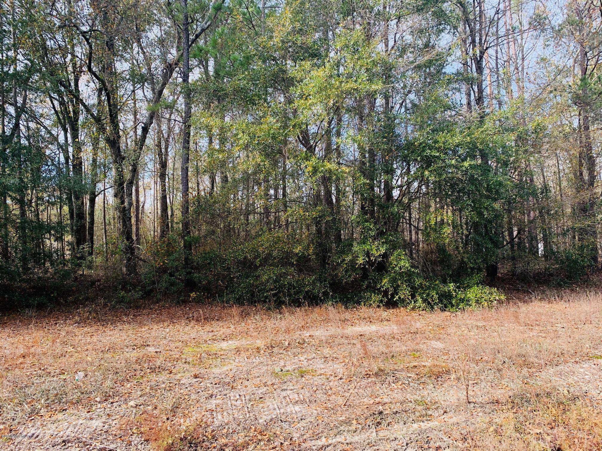 Lot 6 Ivanhoe Road, Ivanhoe, North Carolina 28447, ,Wooded,For sale,Ivanhoe,100196109