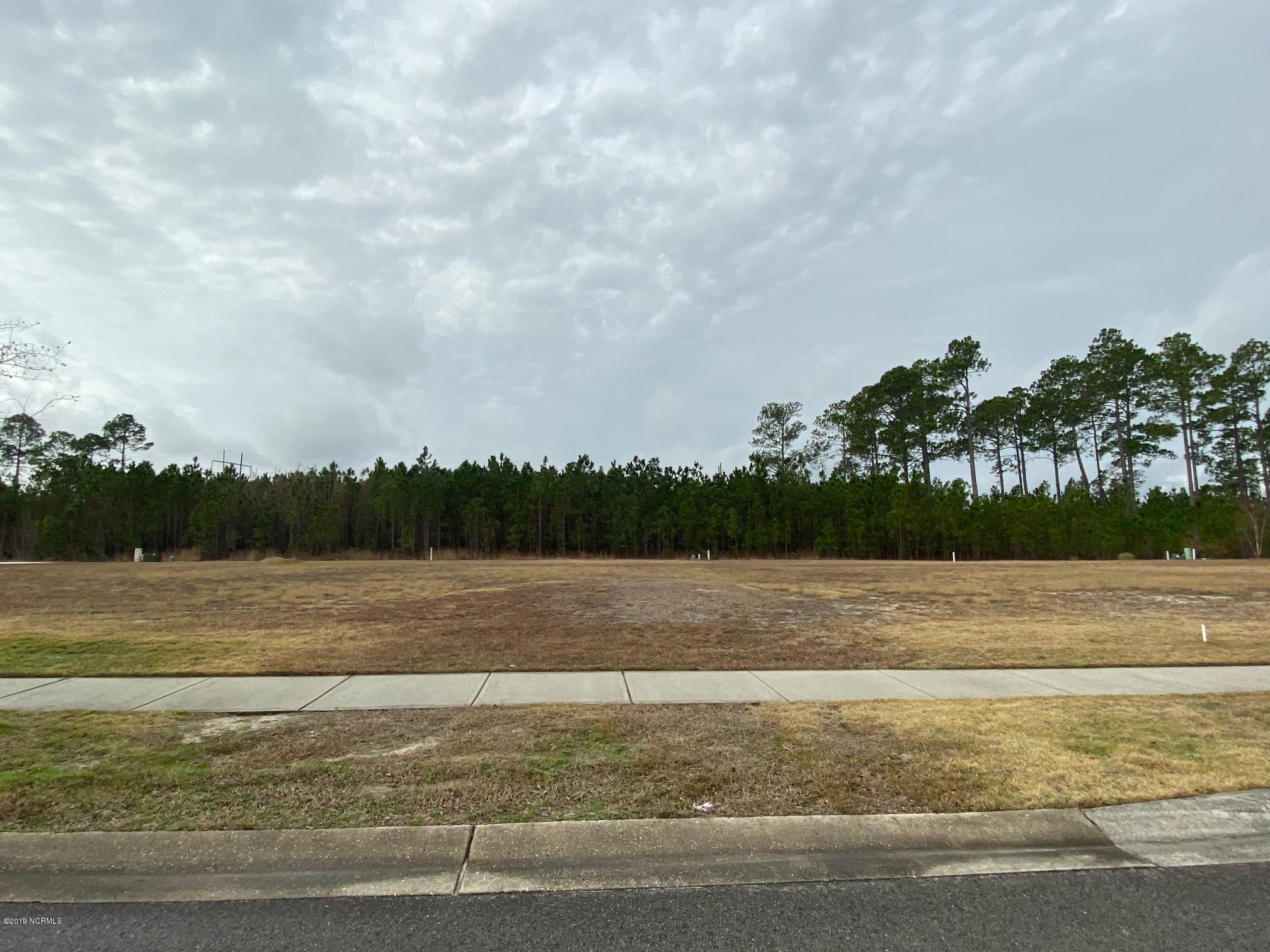 2029 Simmerman Way, Leland, North Carolina 28451, ,Residential land,For sale,Simmerman,100196300
