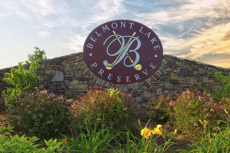 Belmont Pictures (9) - Copy