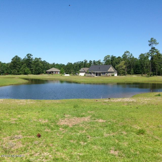 1168 Sabel Loop, Bolivia, North Carolina 28422, ,Residential land,For sale,Sabel,100198210