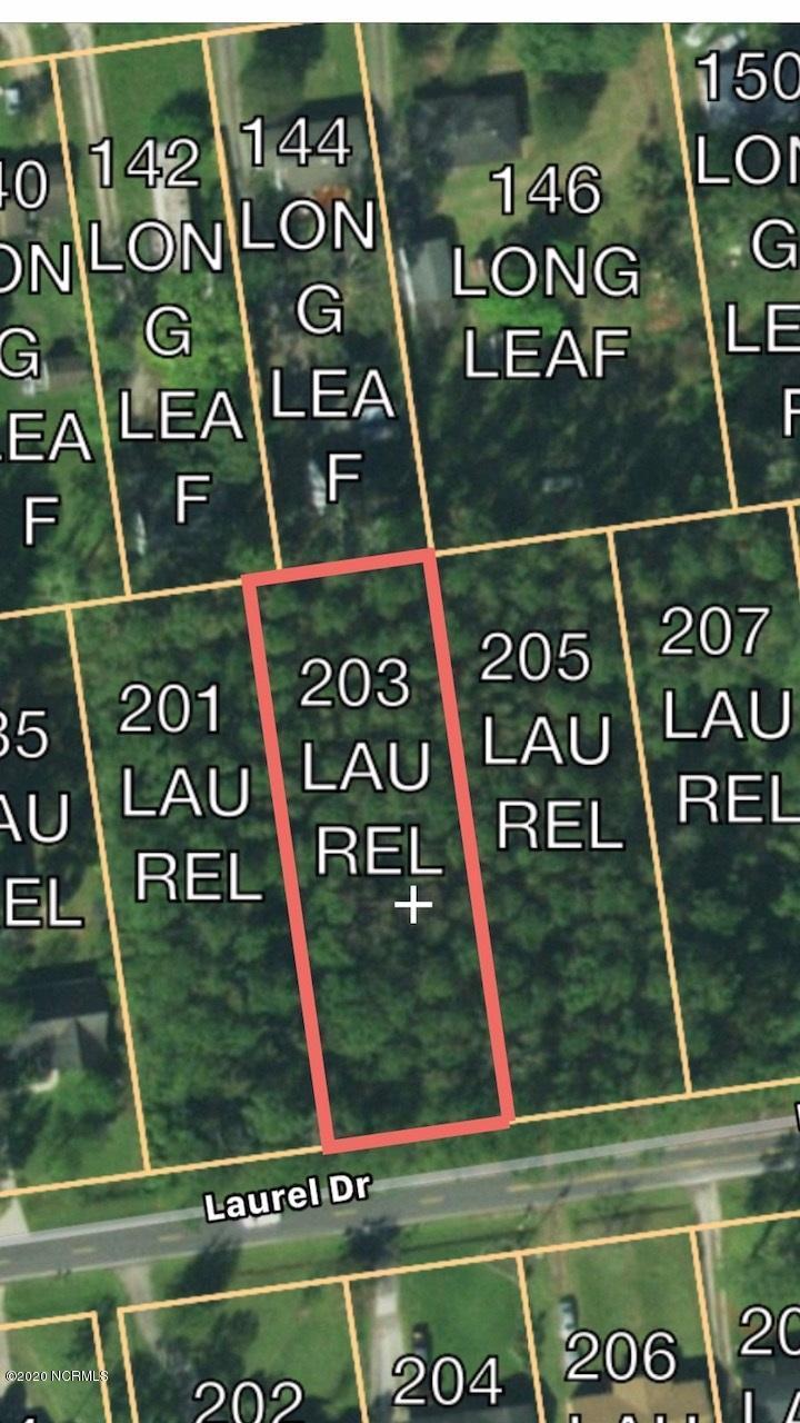 203 Laurel Drive, Wilmington, North Carolina 28401, ,Residential land,For sale,Laurel,100199340
