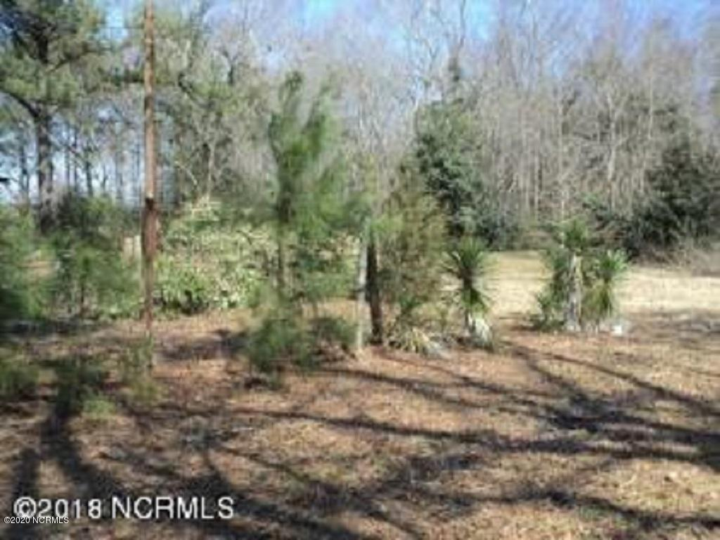 0 Persimmon Road, Rowland, North Carolina 28383, ,Residential land,For sale,Persimmon,100099461