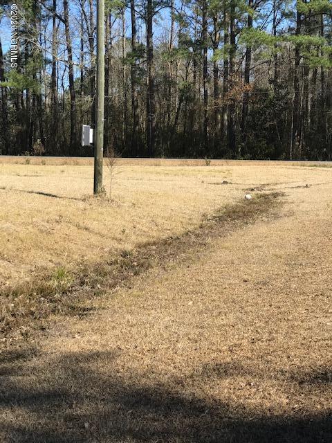 Lot 6 Ernest Gurganus Road, Jacksonville, North Carolina 28540, ,Residential land,For sale,Ernest Gurganus,100199292