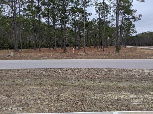 167 Gus Horne Road, Holly Ridge, North Carolina 28445, ,Residential land,For sale,Gus Horne,100204669