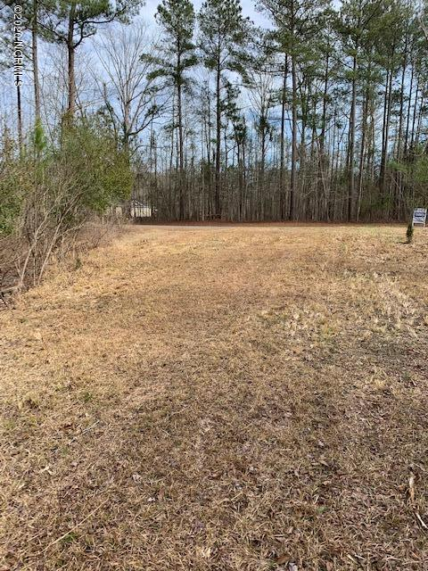 41 Yeats Creek Road, Chocowinity, North Carolina 27817, ,Residential land,For sale,Yeats Creek,100175867