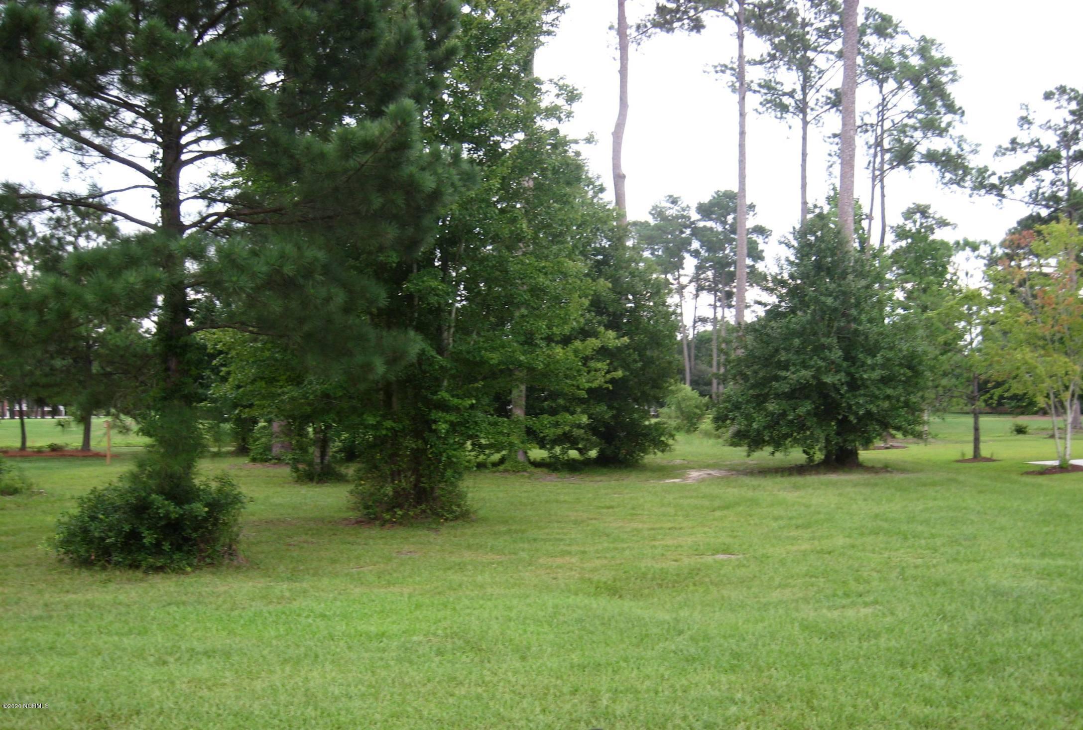 771 Wild Oak Lane, Calabash, North Carolina 28467, ,Residential land,For sale,Wild Oak,100159021