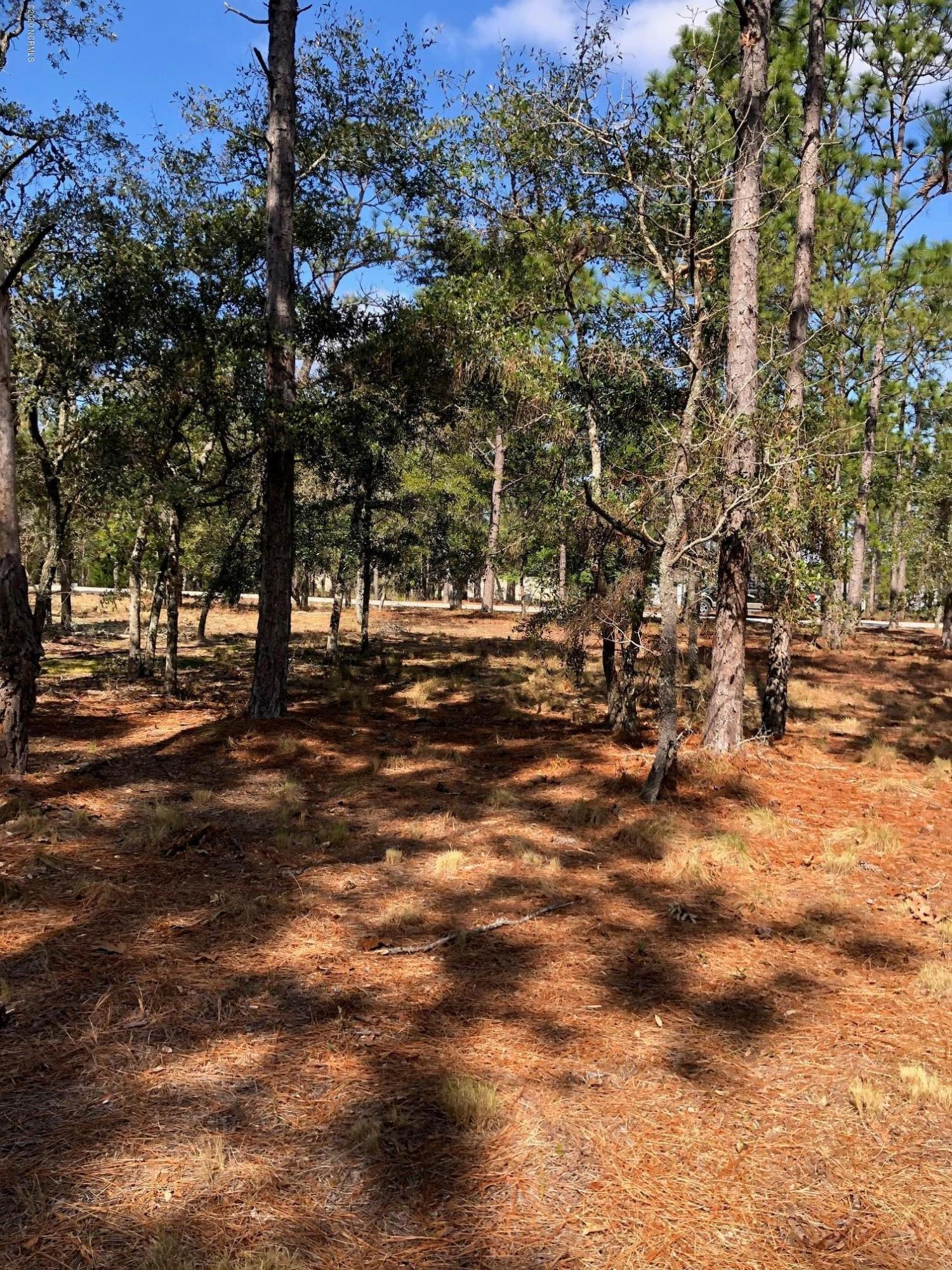3597 Concordia Avenue, Supply, North Carolina 28462, ,Residential land,For sale,Concordia,100205787